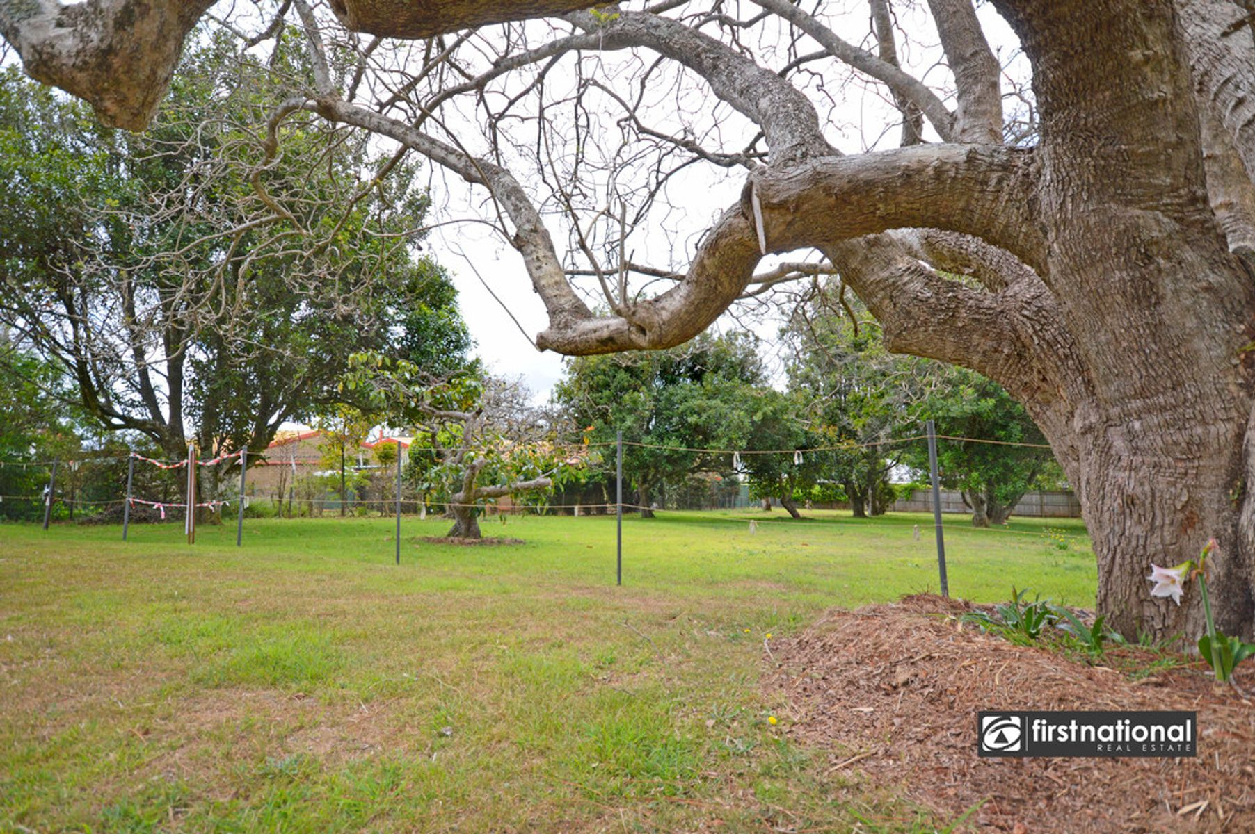 25 Tweed Heads Av, Tamborine Mountain, QLD 4272