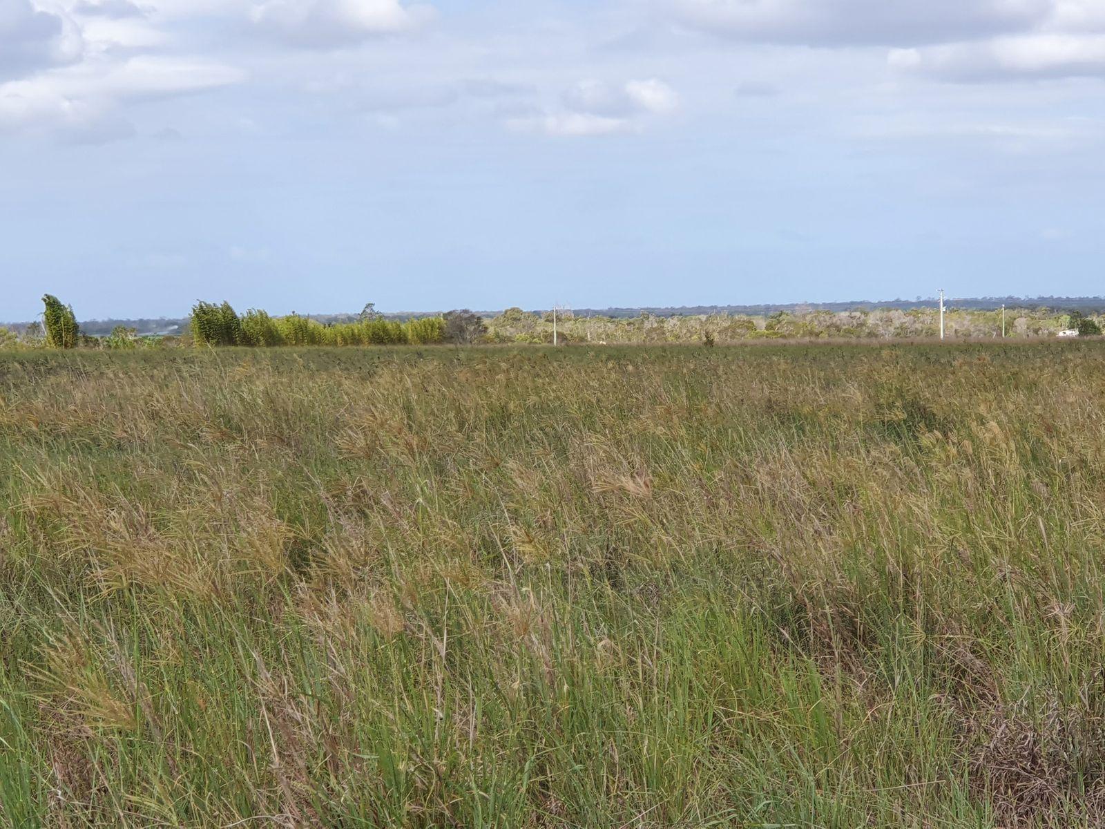 61 Atwells Road, Farnsfield, QLD 4660
