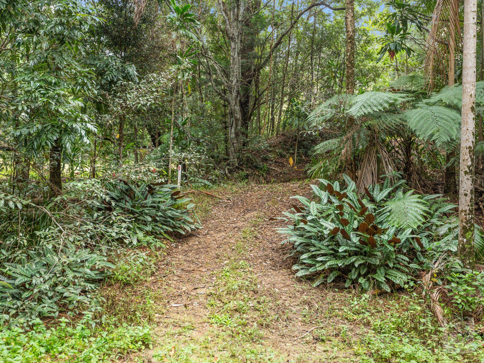 947 Reserve Creek Road, Reserve Creek, NSW 2484