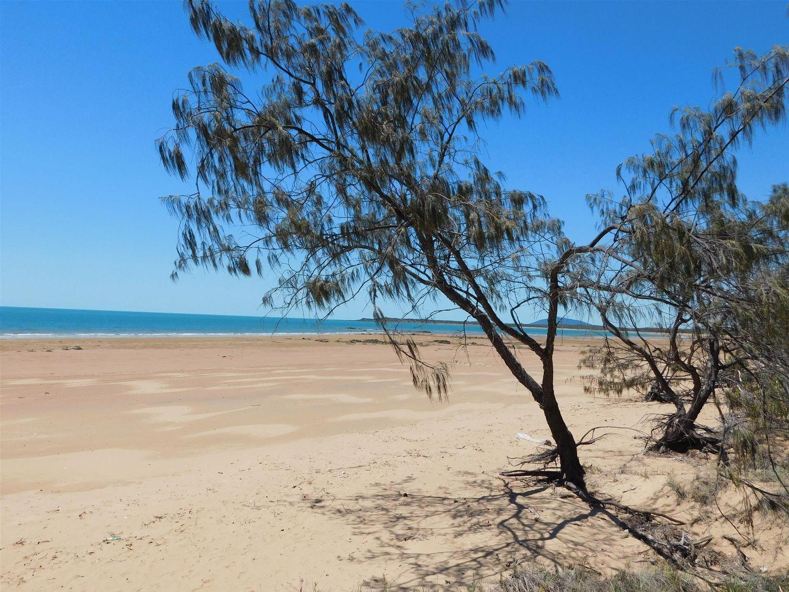 767 Greenhill Road, Ilbilbie, QLD 4738