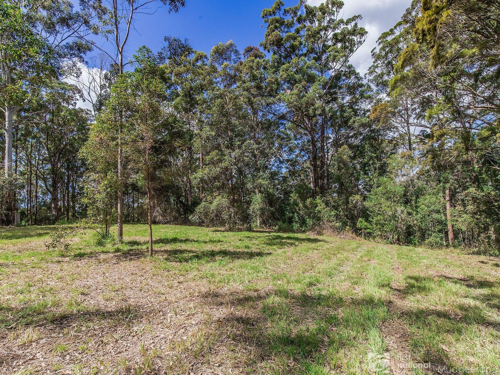 1806 Gold Coast Springbrook Road, Springbrook, QLD 4213