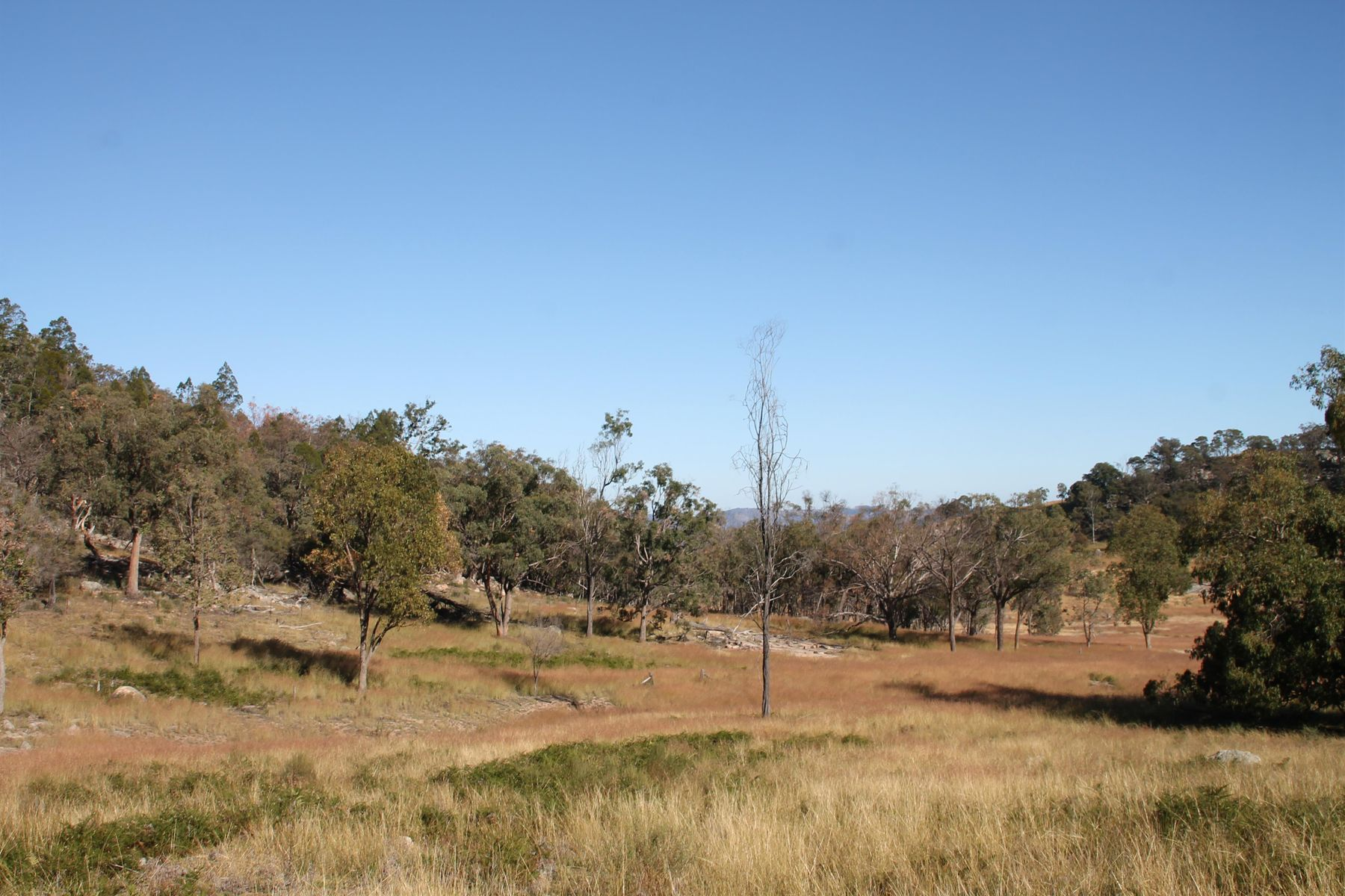 Lot 53 Gunyah Road, Tenterfield, NSW 2372
