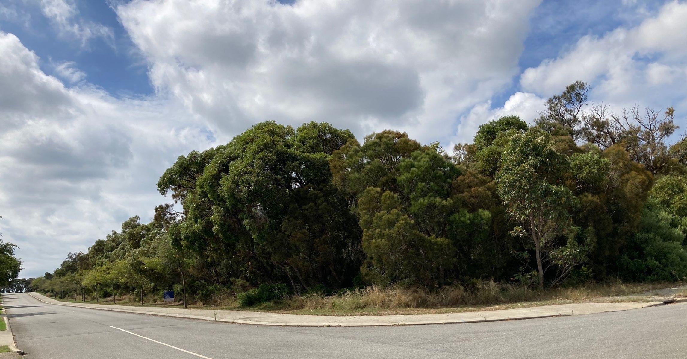 58 Sydney Street, Yakamia, WA 6330