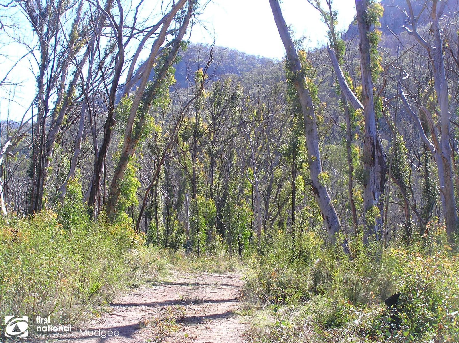 Lot 85 McDonalds Hole Road, Mudgee, NSW 2850