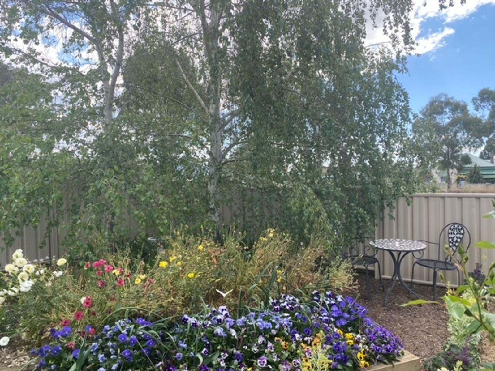 8 Carpenter Lane, Jennings, NSW 4383
