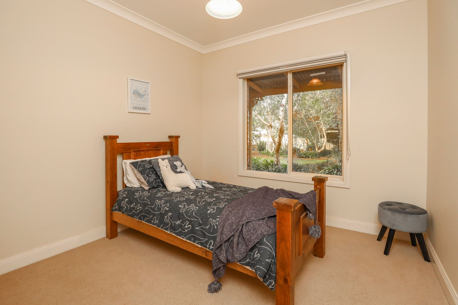 169 Euston Avenue, Irymple, VIC 3498