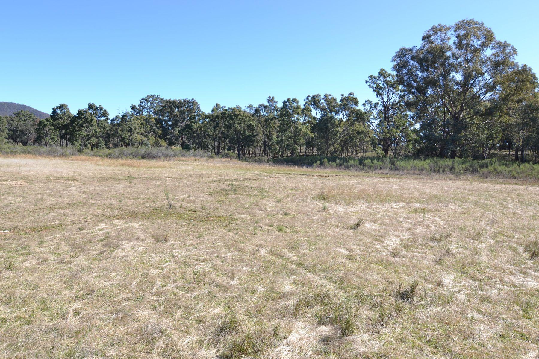 Lot 1/Part 121 Spring Flat South Lane, Mudgee, NSW 2850