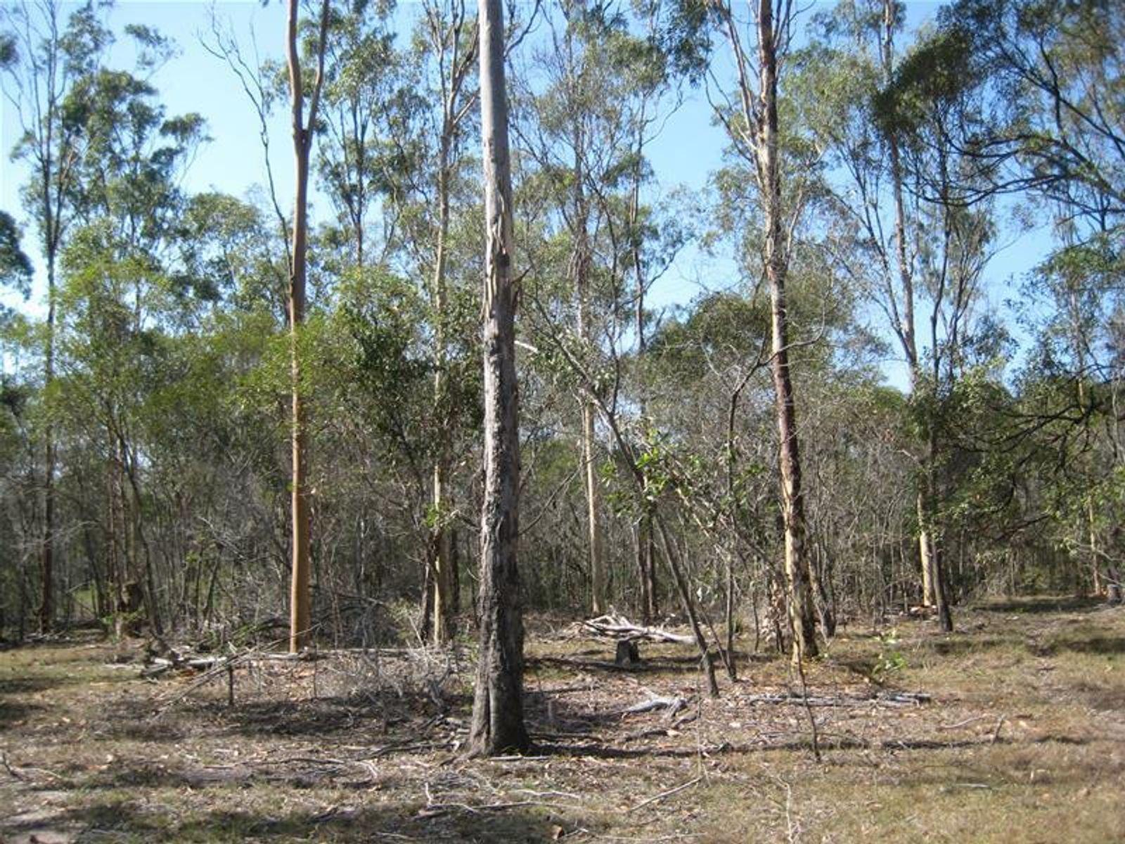 Quarry Access Road, Bucca, QLD 4670