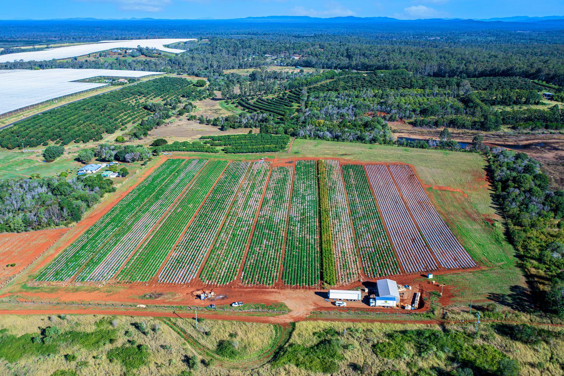 45 Plantation Road, South Isis, QLD 4660
