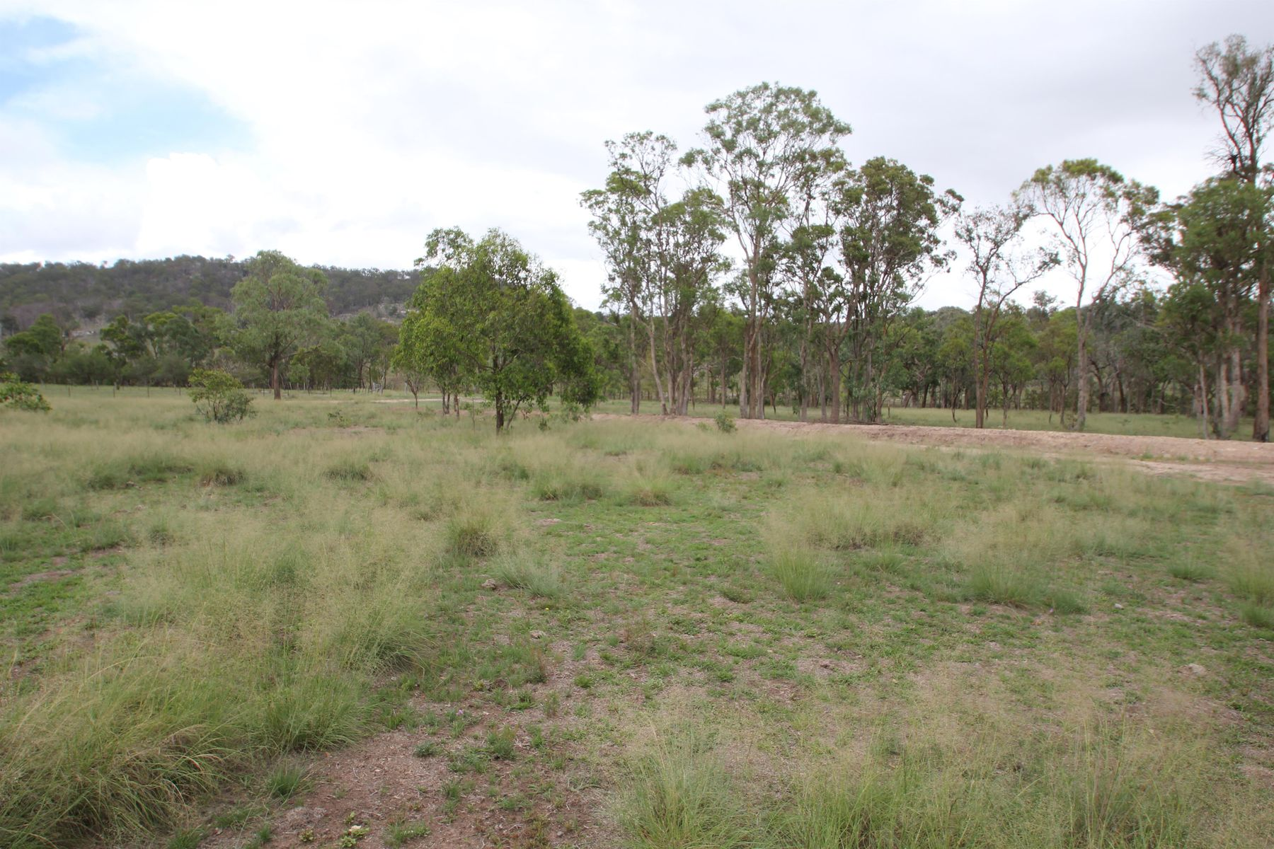 330 Mount Mackenzie Road, Tenterfield, NSW 2372