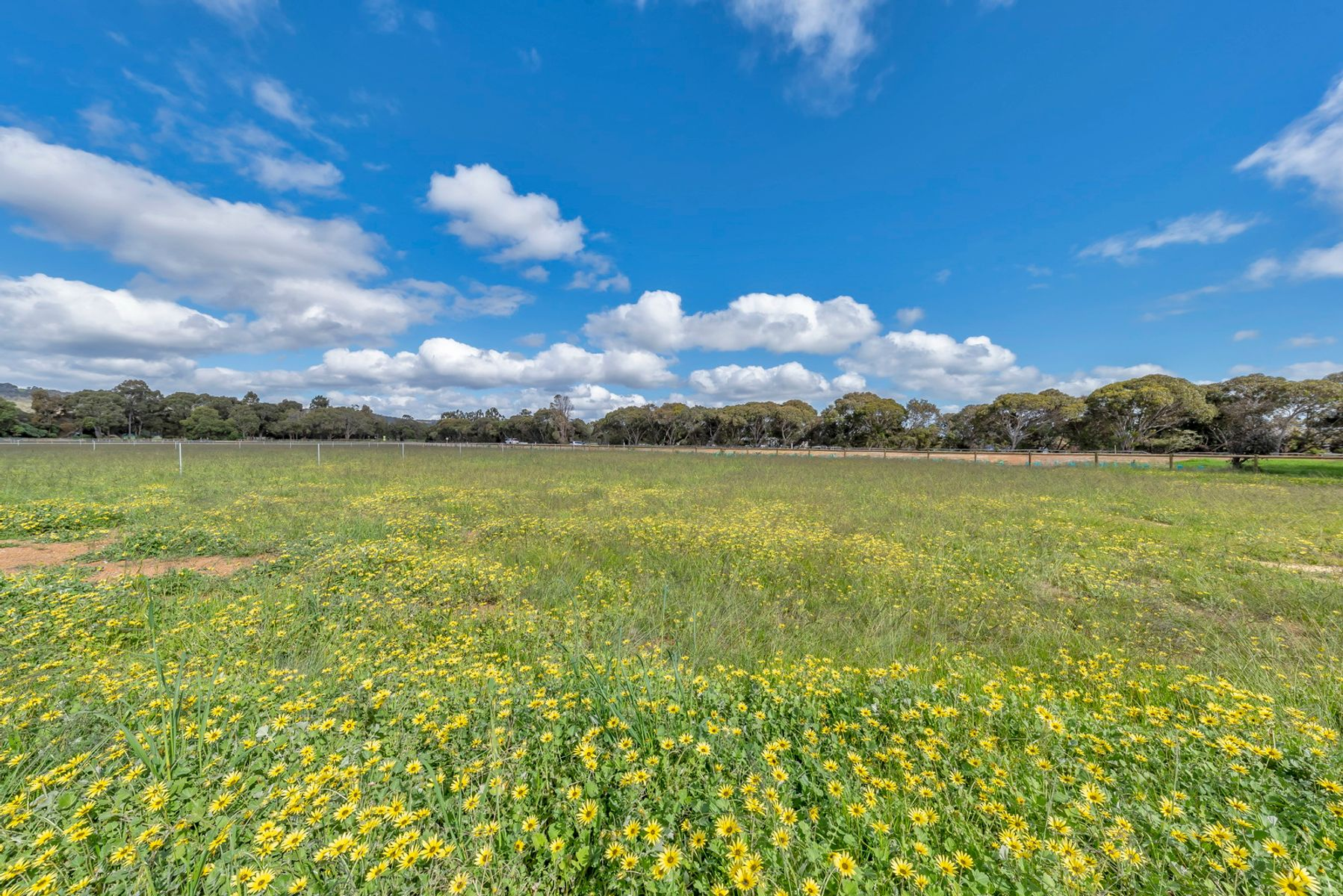 Lot 310 Dewar Road, North Dandalup, WA 6207