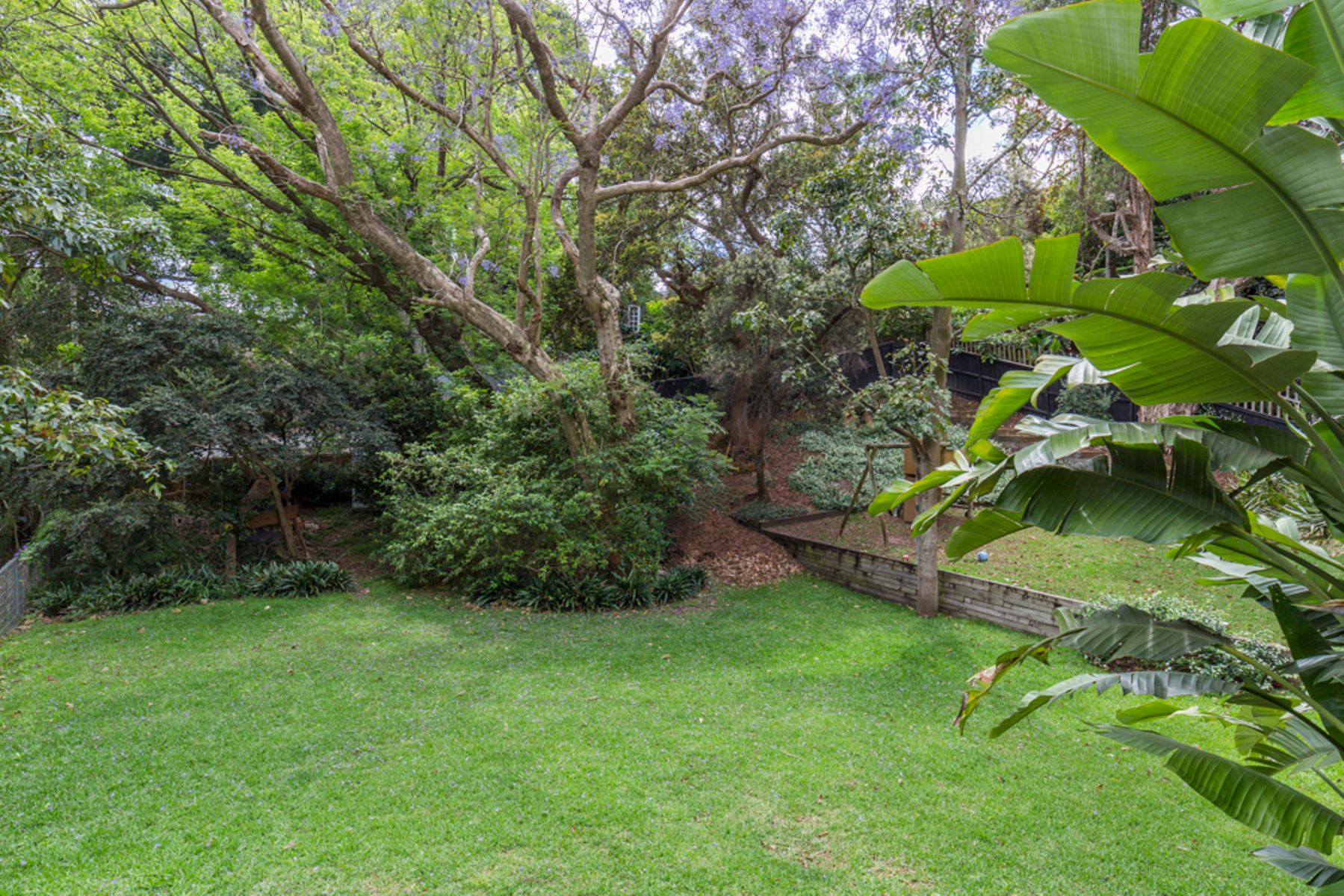 1st City 16 Hopetoun Avenue Vaucluse Nsw 2030