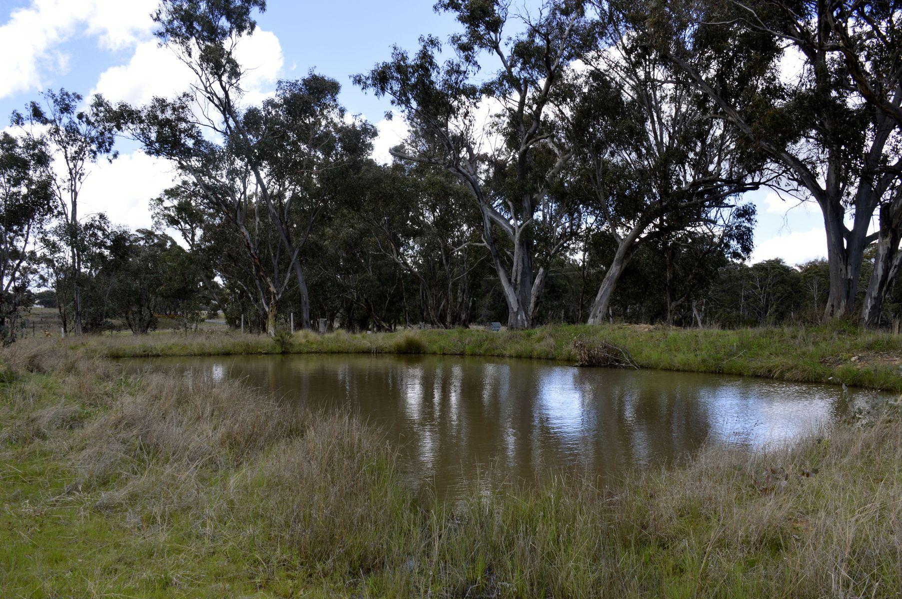 1794 Windeyer Road, Mudgee, NSW 2850