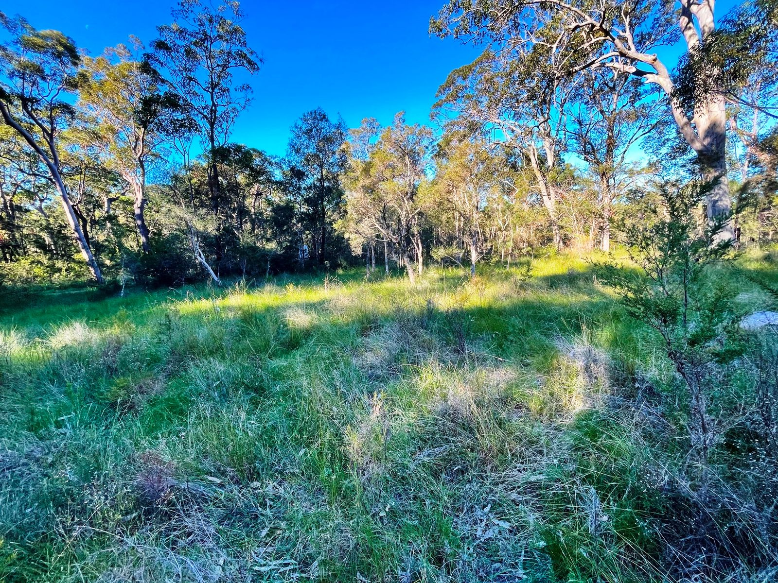 Lot 824 Tenterfield Road, North Arm Cove, NSW 2324