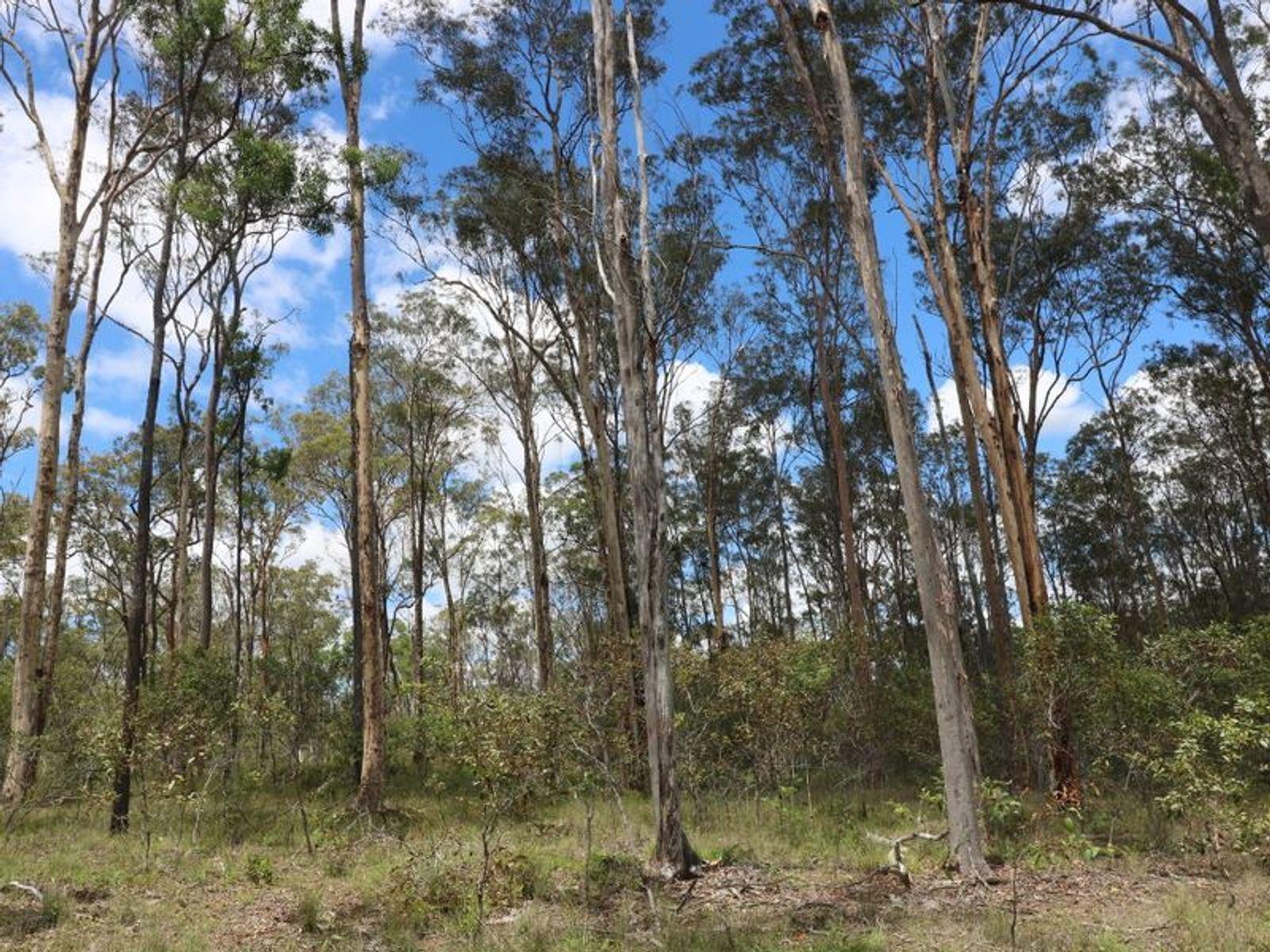 Lot 47/0 Mullers Road, Redridge, QLD 4660