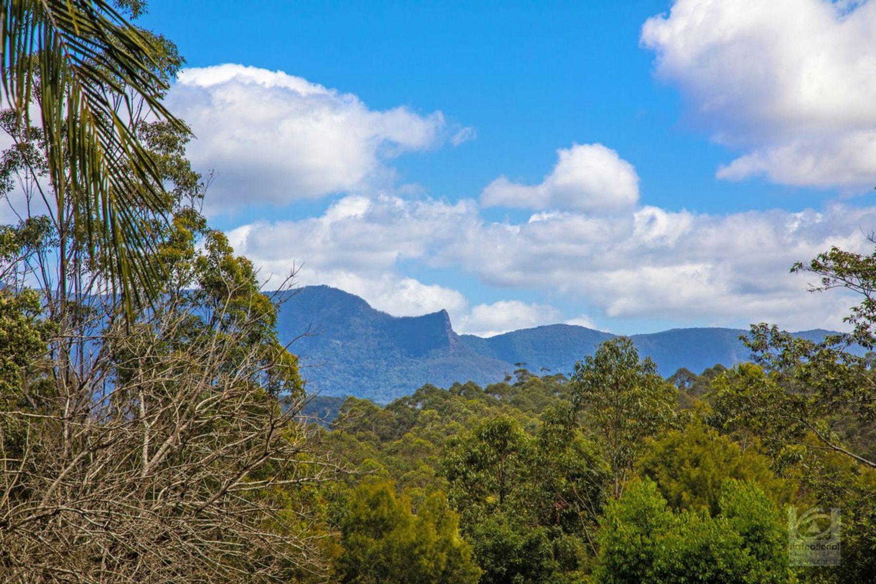 665 Byrrill Creek Road, Byrrill Creek, NSW 2484