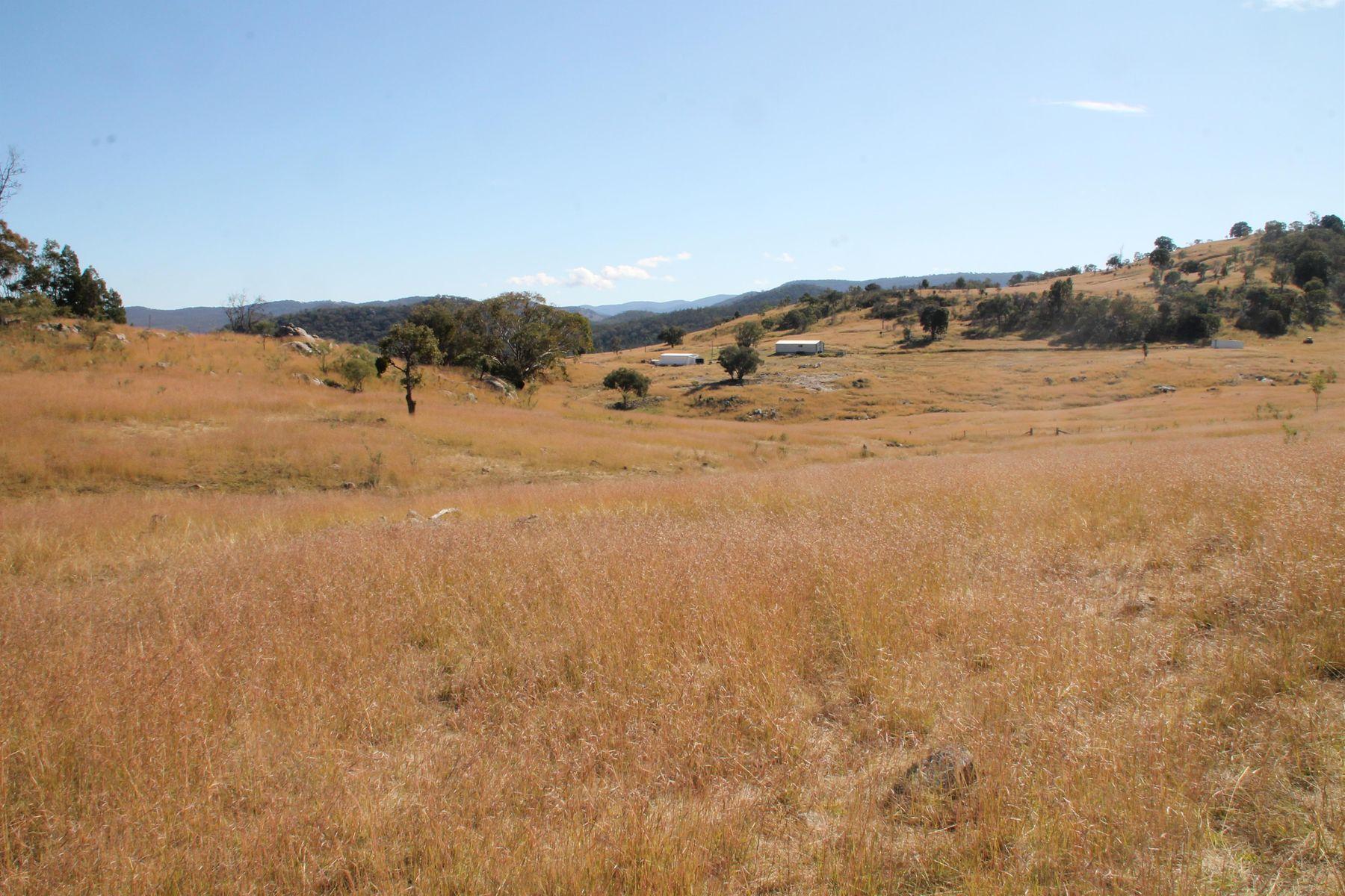 Lot 15 Gunyah Road, Tenterfield, NSW 2372
