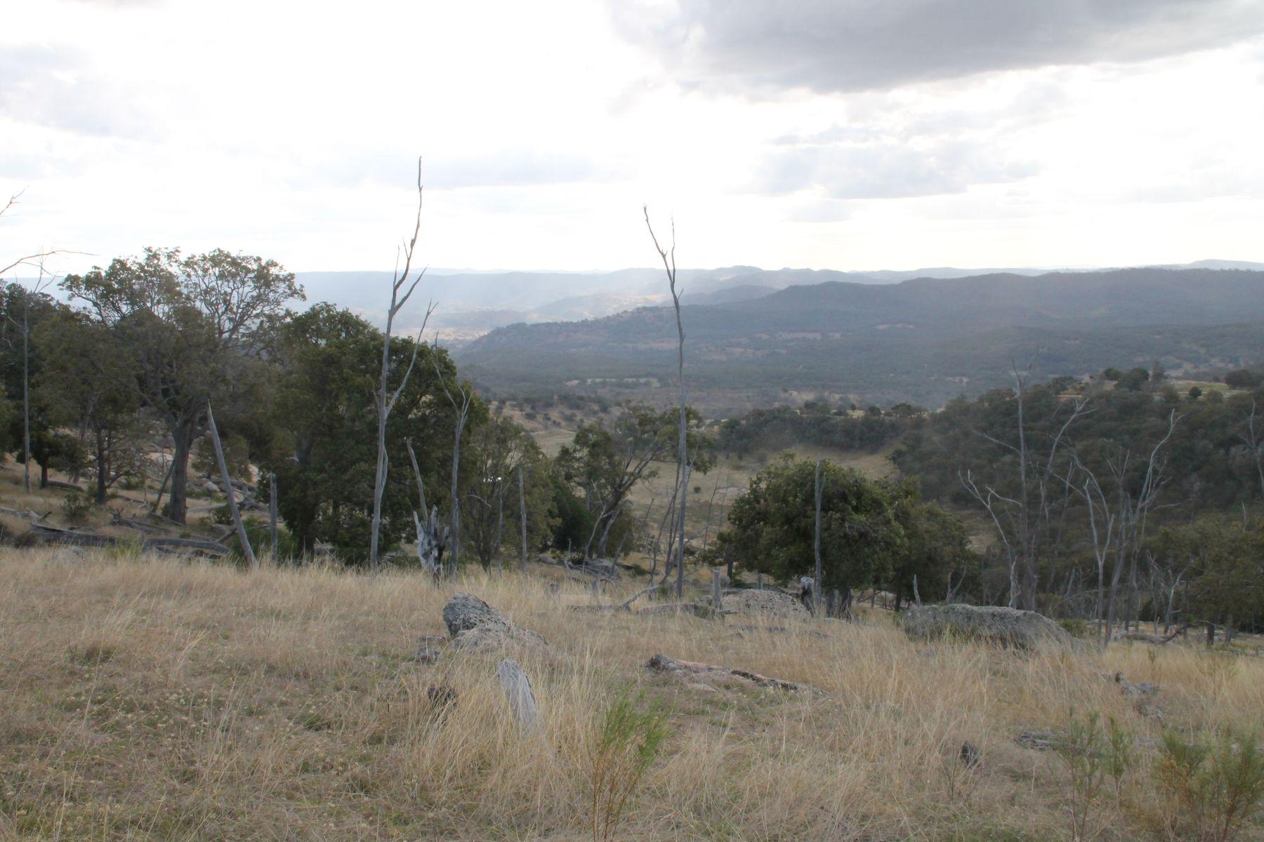 Lot 8 Gunyah Road, Tenterfield, NSW 2372