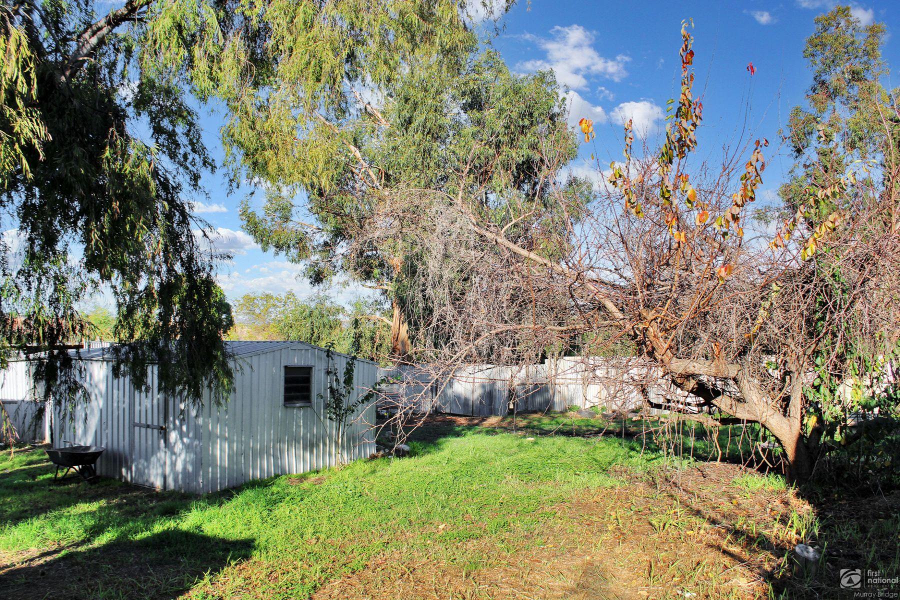 16 Green Street, Mypolonga, SA 5254