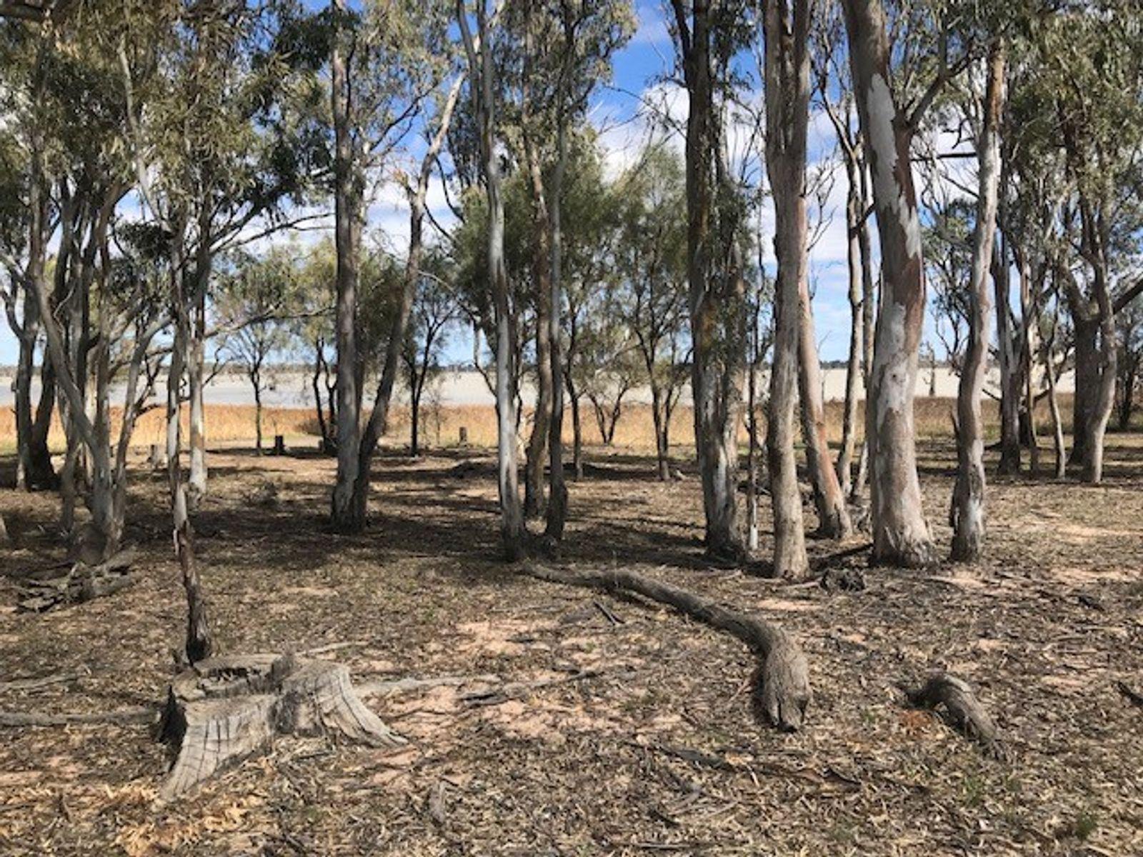 114 Dry Lake Road, Euston, NSW 2737