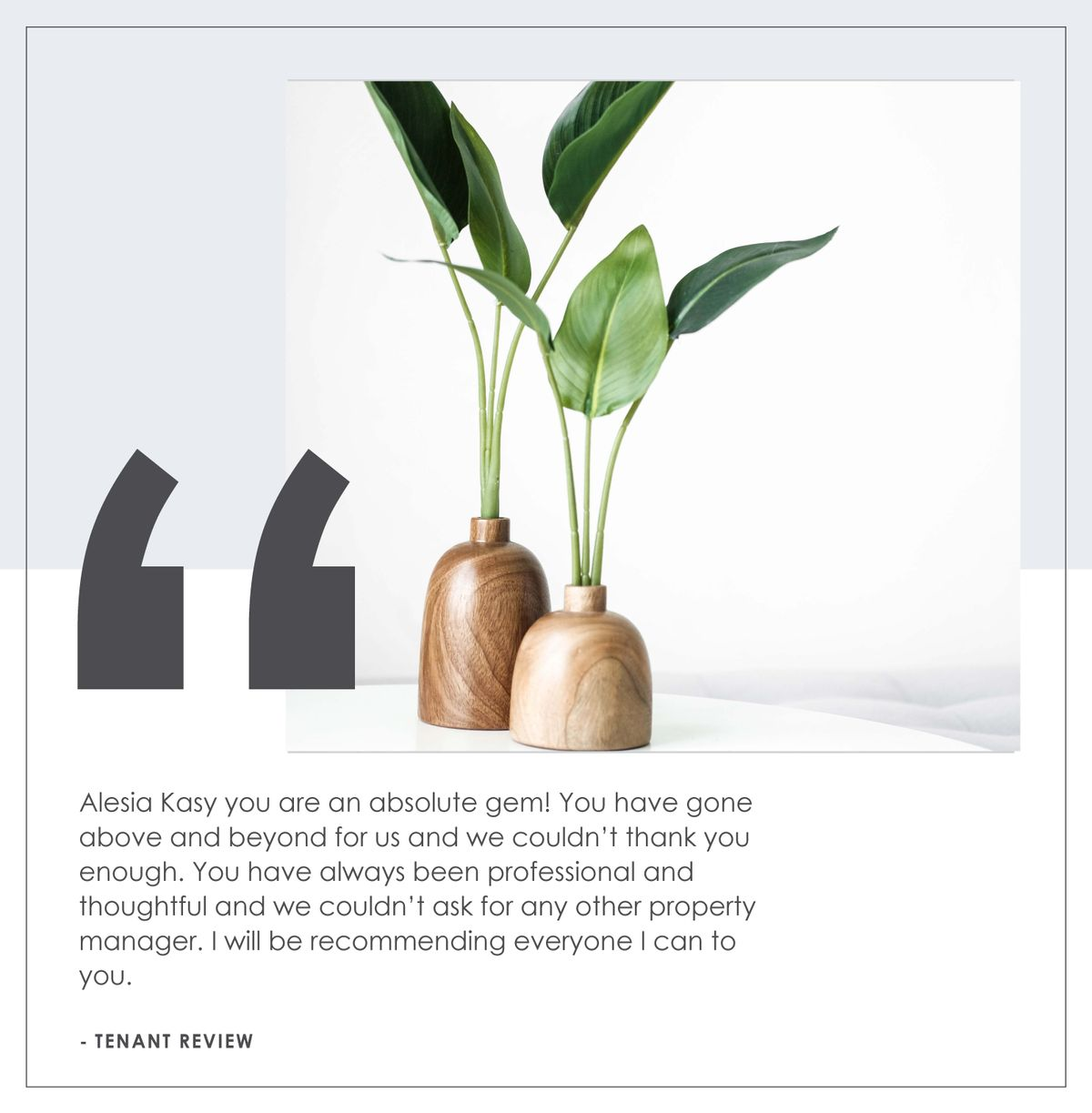 Testimonial with plant in background