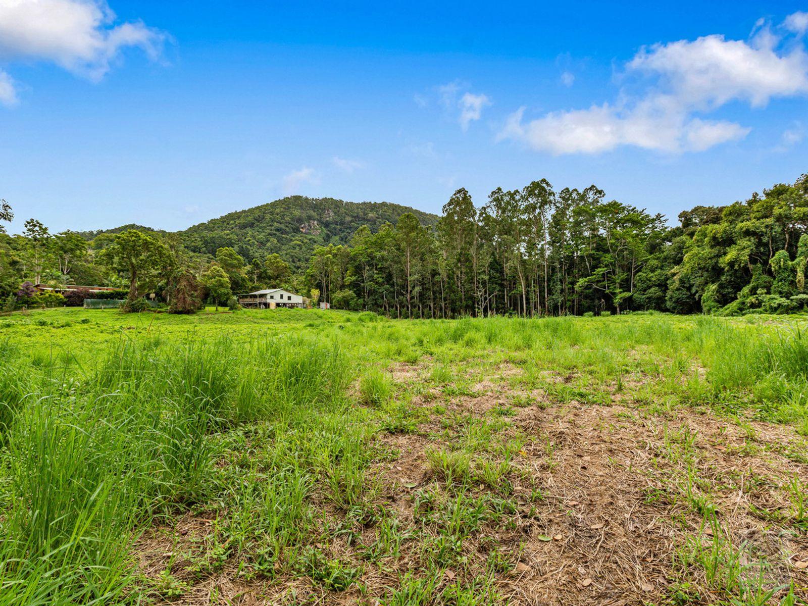 41 Solomons Road, Mount Warning, NSW 2484