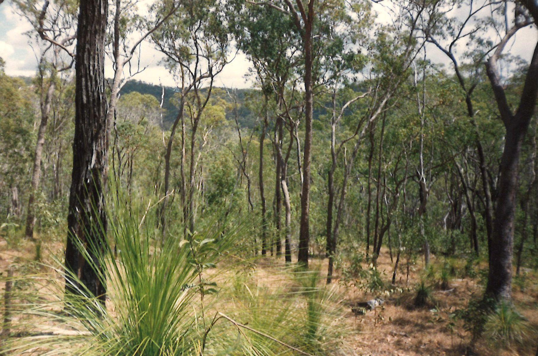 Lot 10 Muller Road, Baffle Creek, QLD 4674
