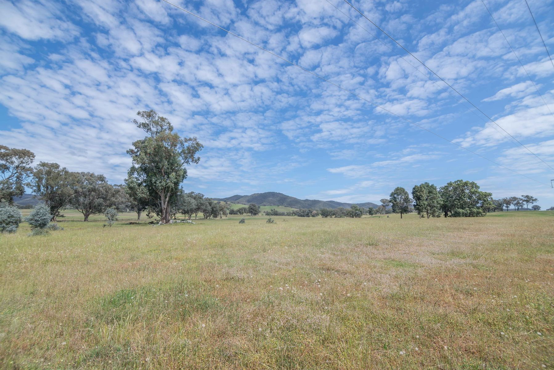 106 Spring Flat South Lane, Mudgee, NSW 2850