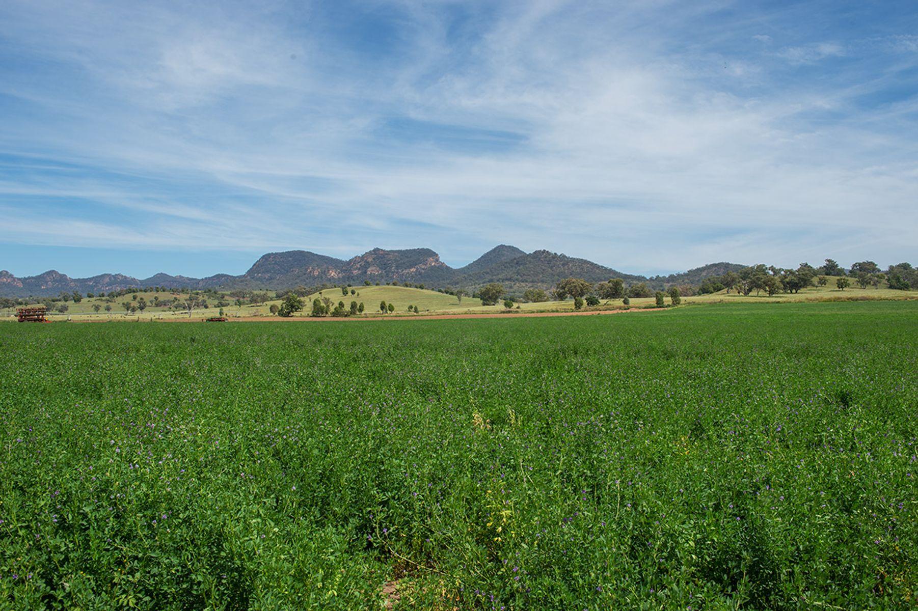 6280 Bylong Valley Way, Rylstone, NSW 2849