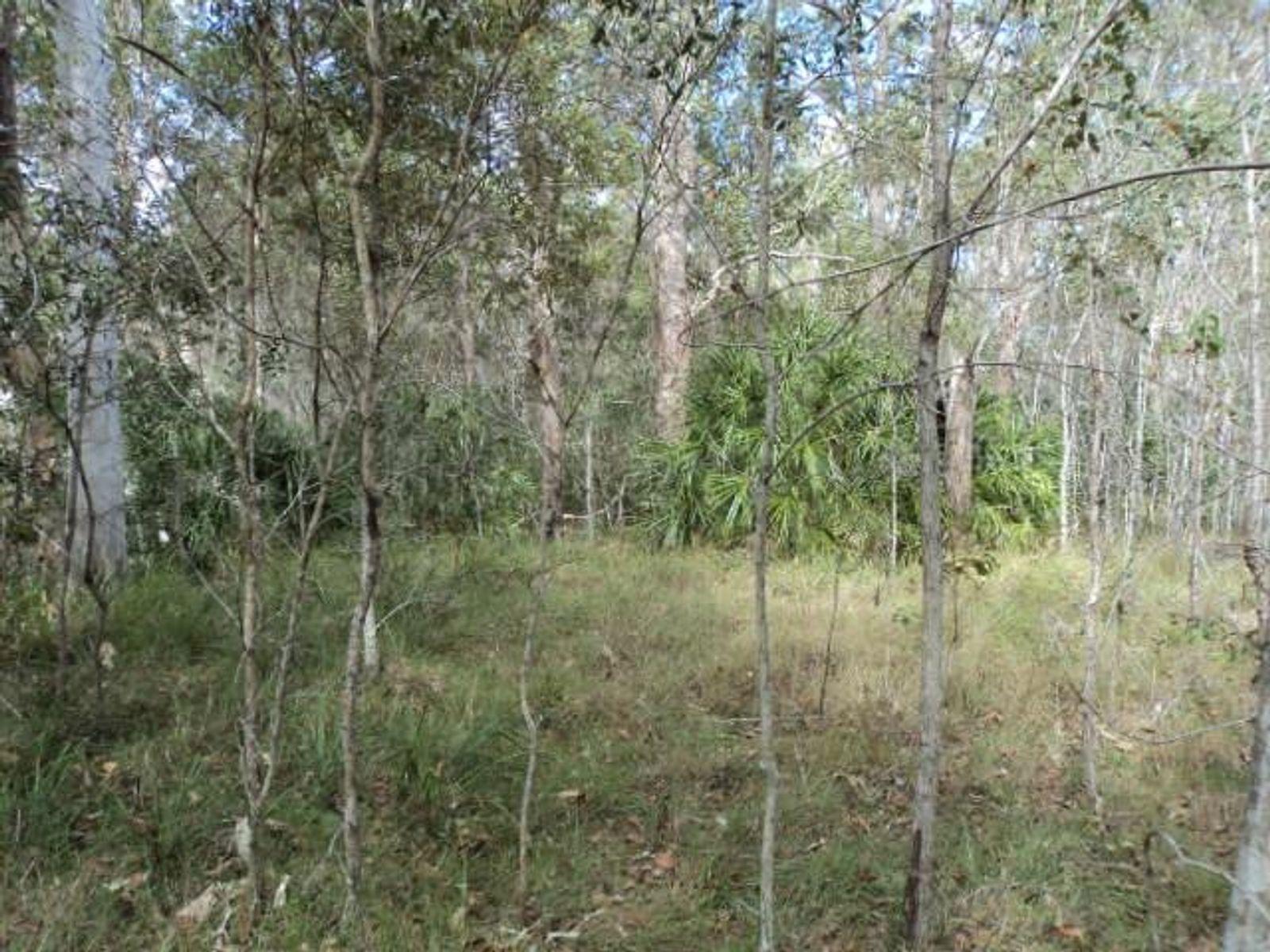 Lot 9 Maude Hill Road, Deepwater, QLD 4674