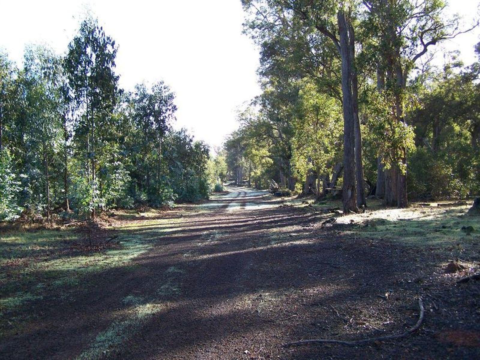 Lot 11 Woodland Rise, Yabberup, WA 6239