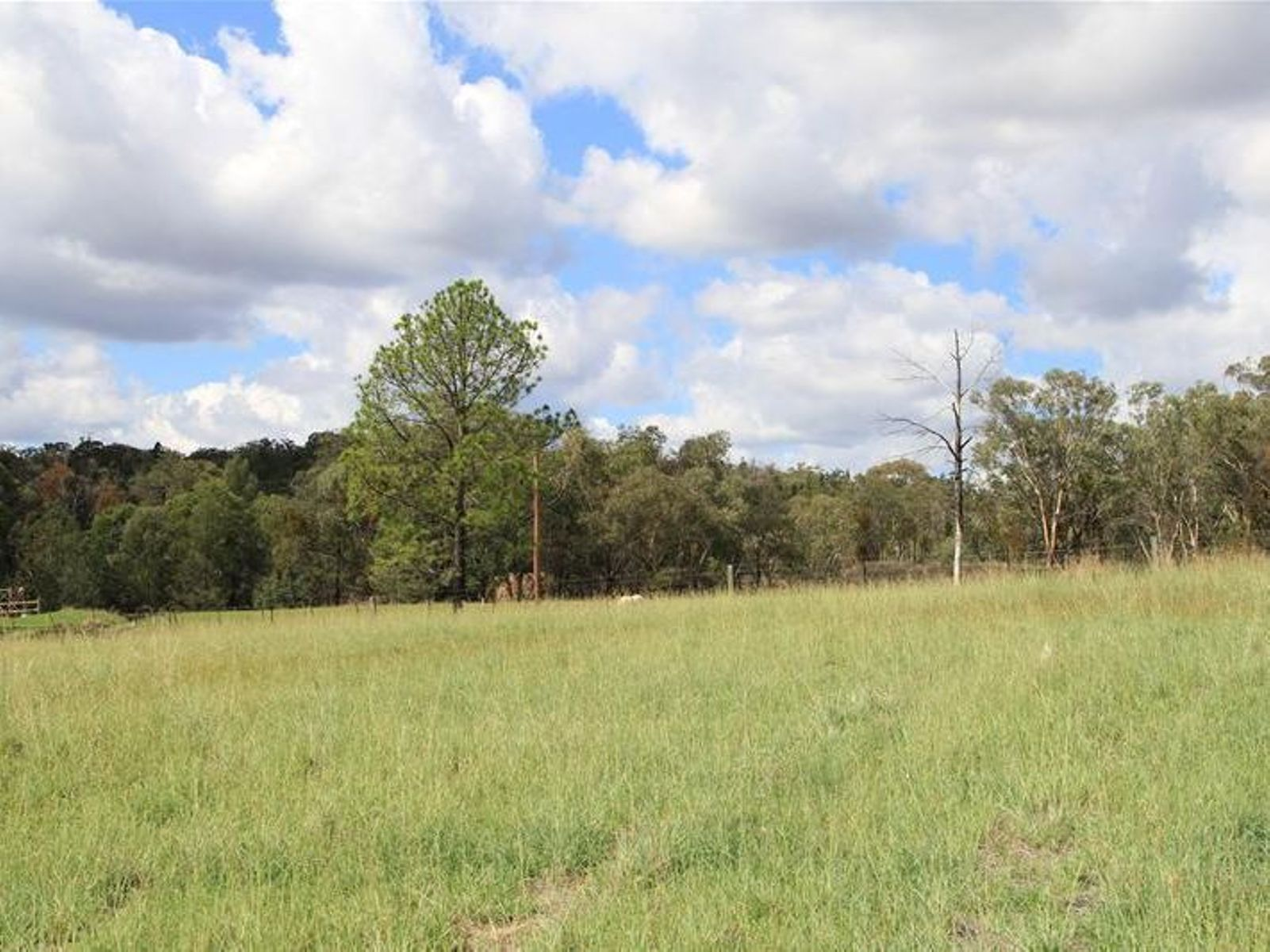 1-4 Old Bundarra Road, Inverell, NSW 2360