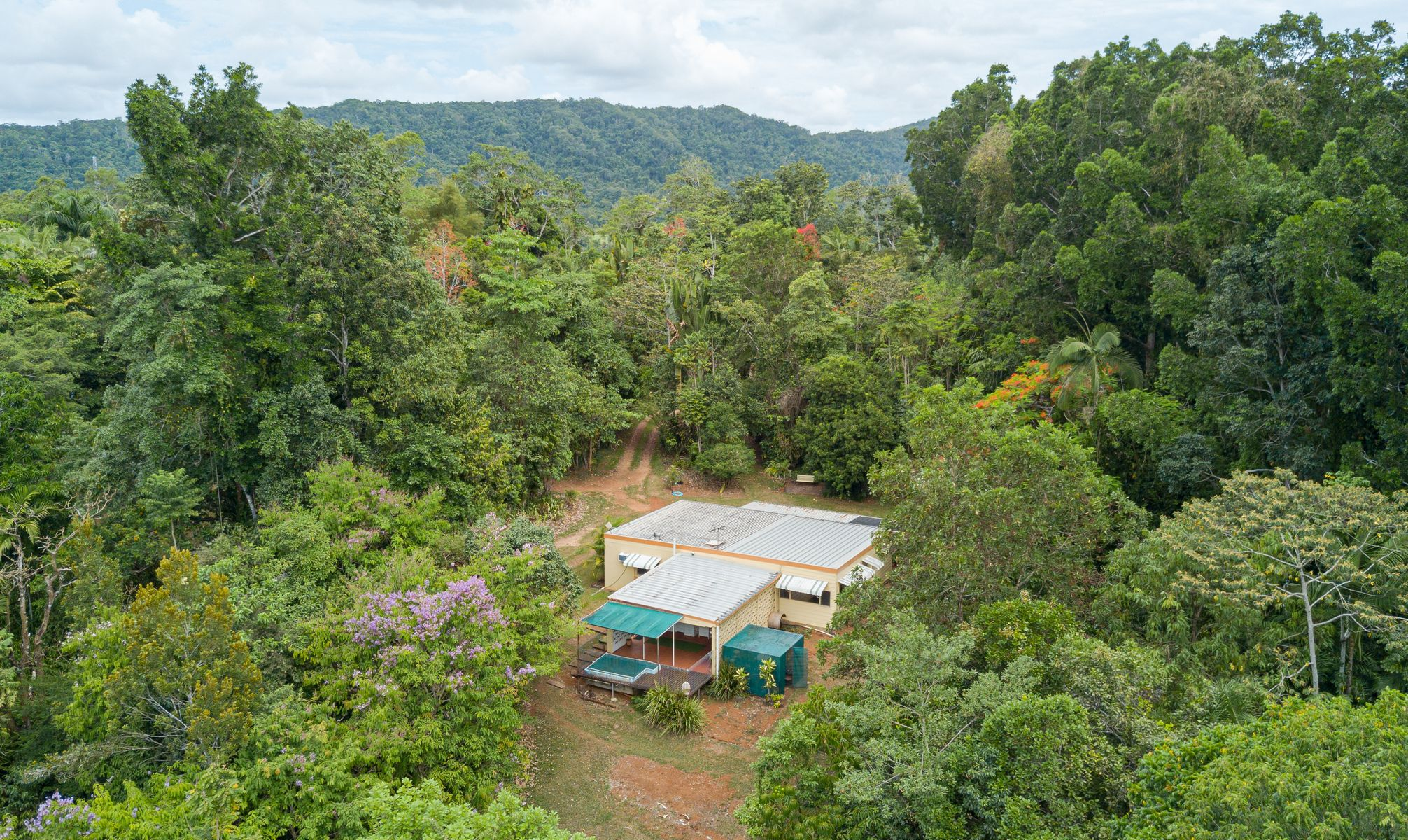 45 Spandley Road, Camp Creek, QLD 4871