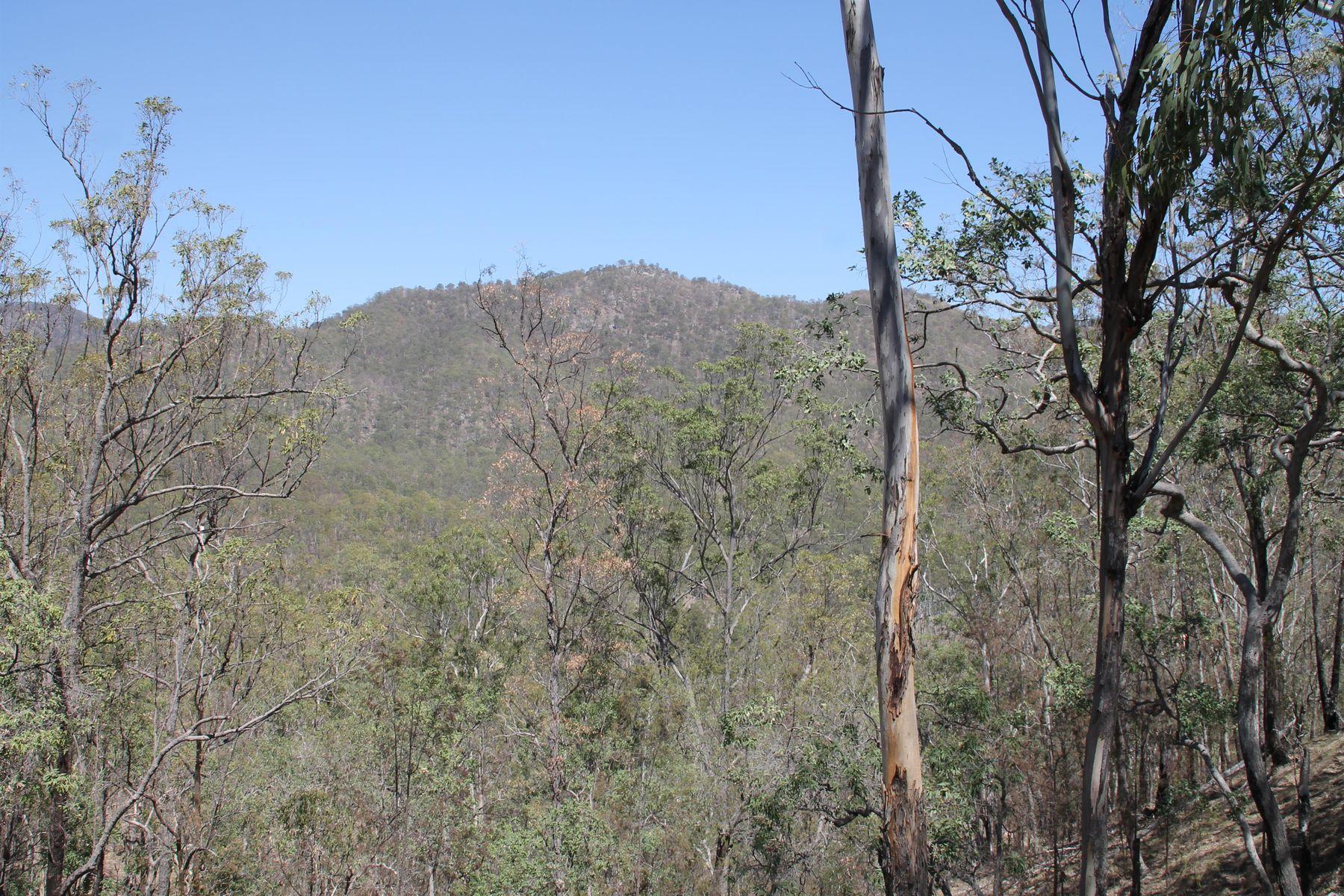 Lots 103 & 127 Demon Creek Road, Tenterfield, NSW 2372