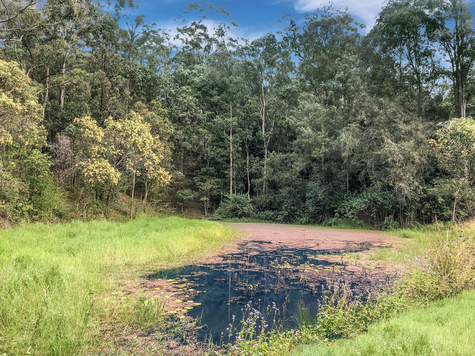 860 Naughtons Gap Road, Naughtons Gap, NSW 2470