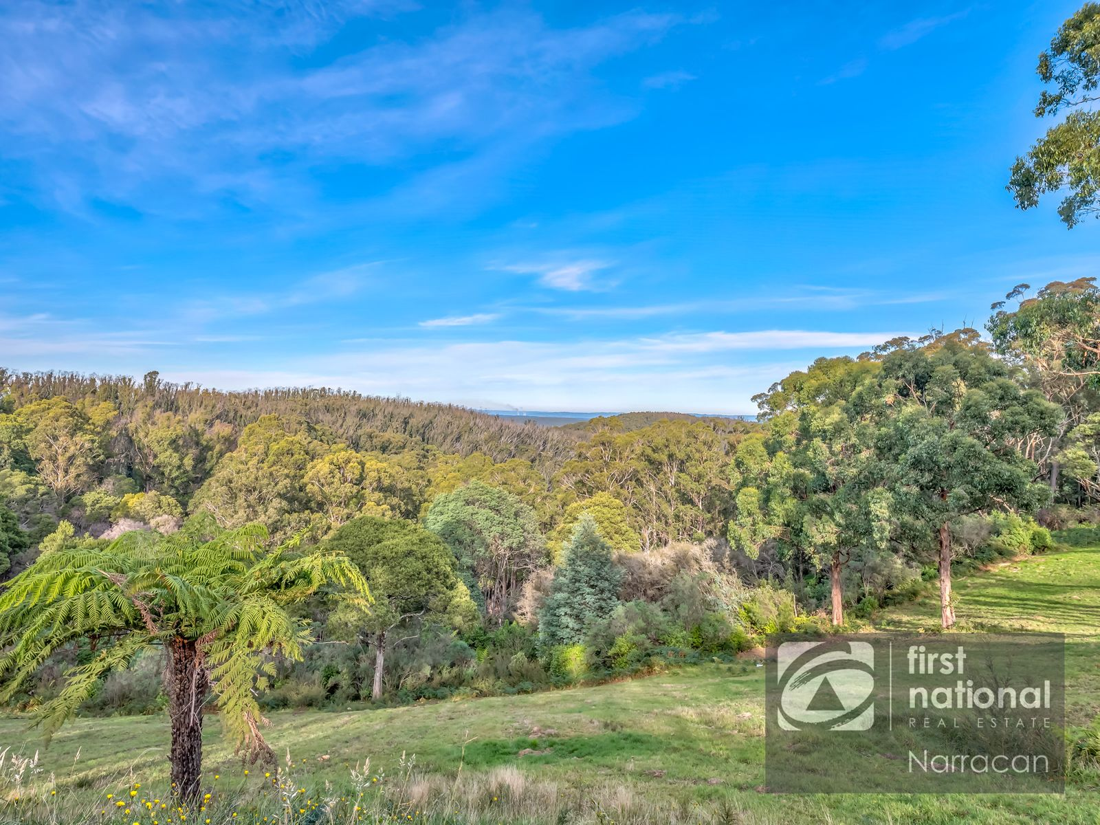 Lot 10 Section 2  Happy Go Lucky Road, Walhalla, VIC 3825