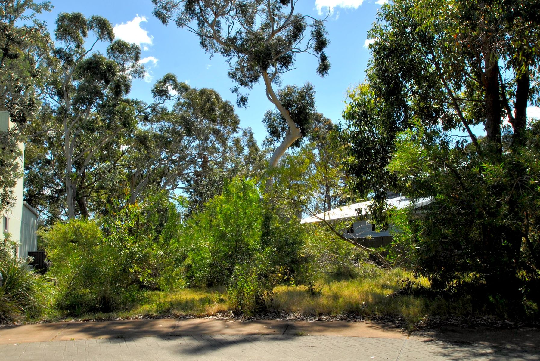 8 Silkwood Walk, Callala Beach, NSW 2540