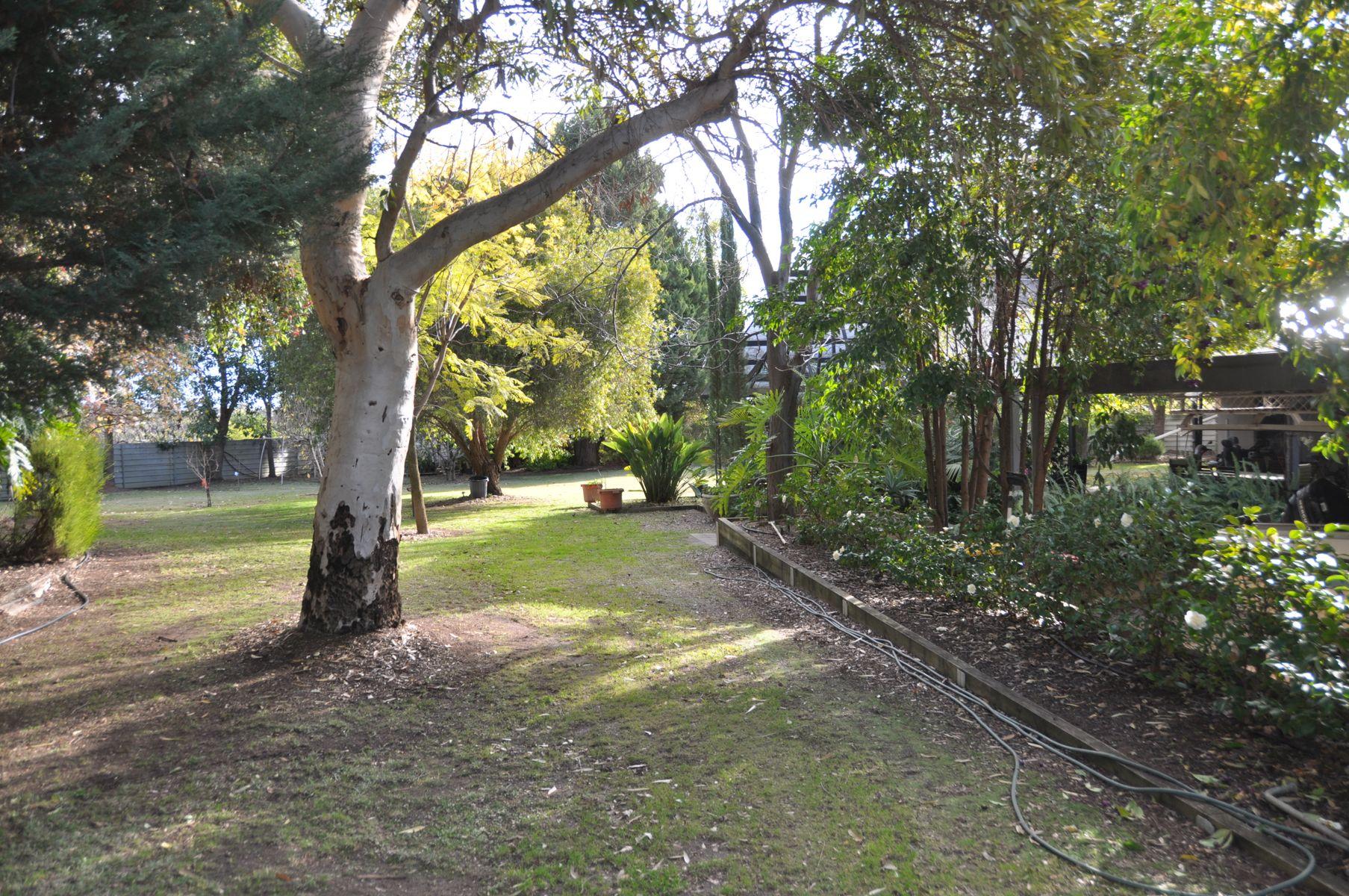 253 Virgo Road, Waikerie, SA 5330