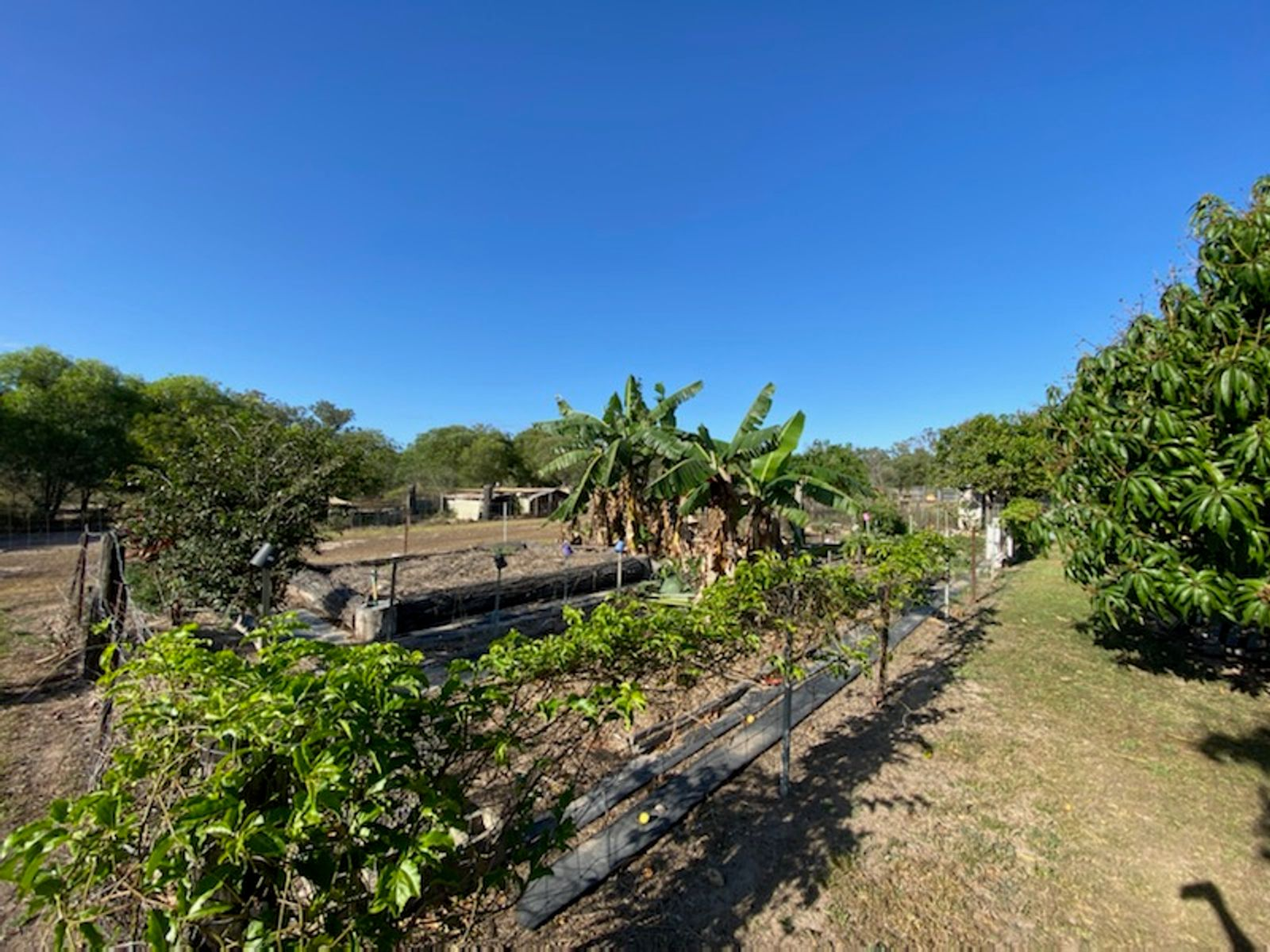 524 Saint Lawrence Connection Road, St Lawrence, QLD 4707