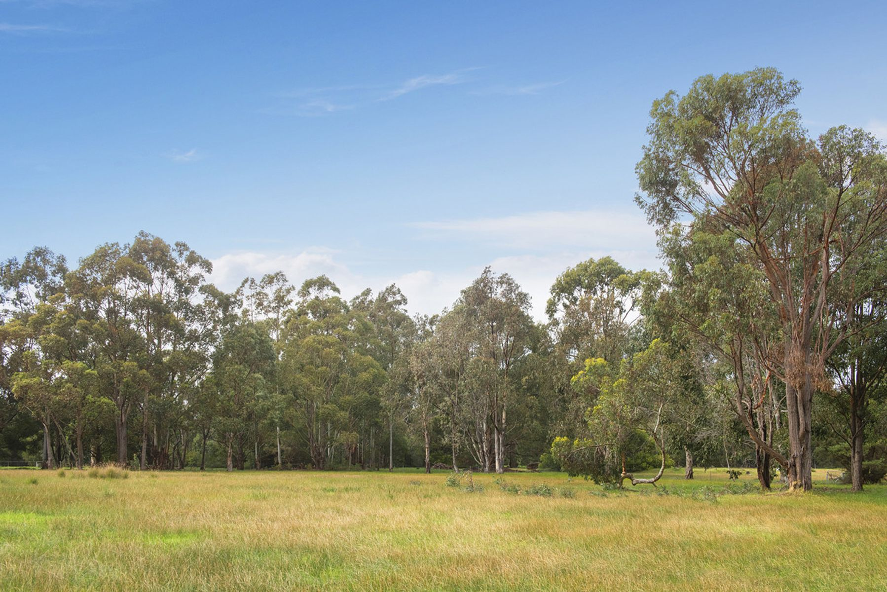 Lot P/L 203/51 Exmoor Drive, Margaret River, WA 6285