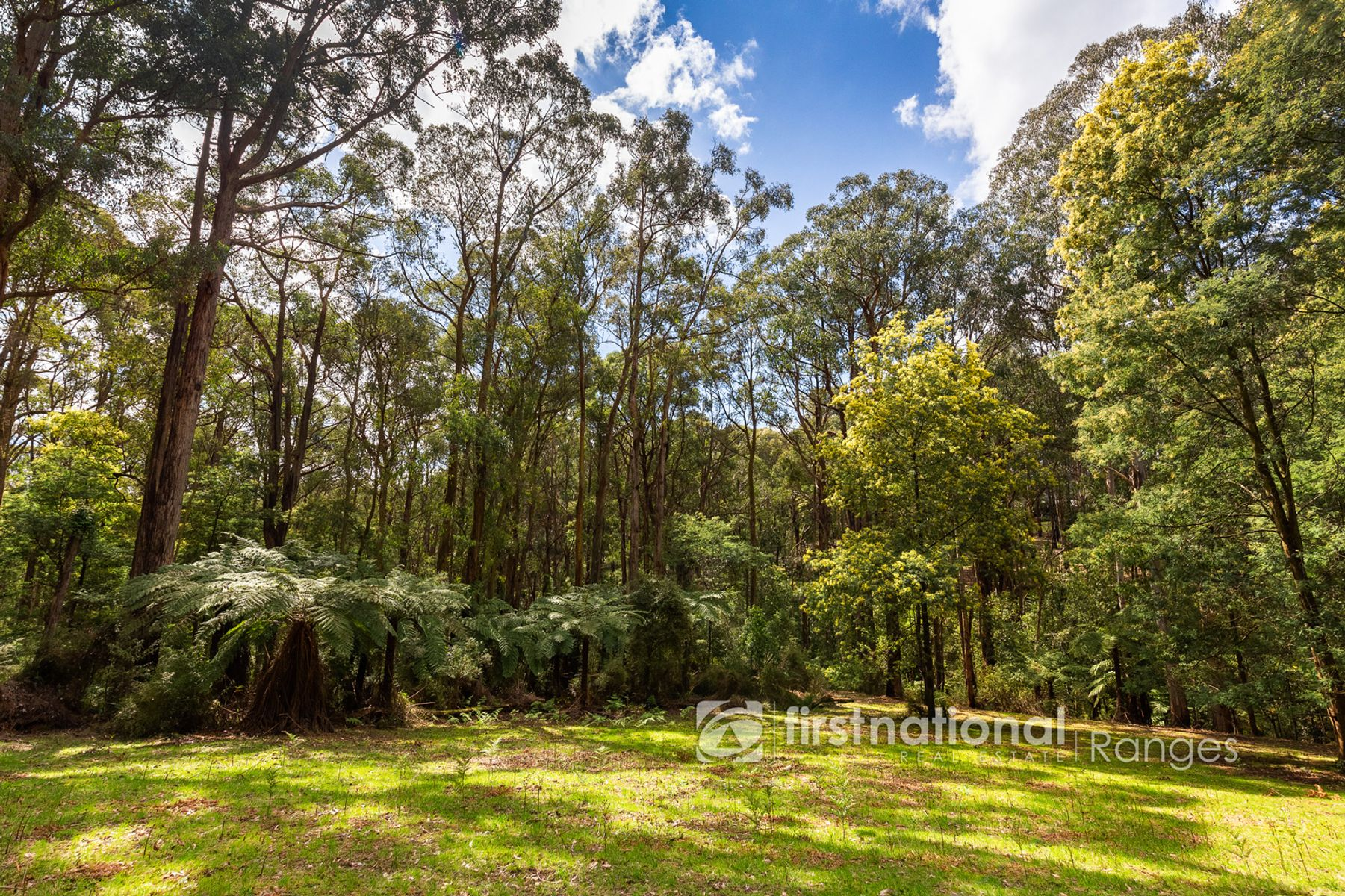 28 Morbey Road, Gembrook, VIC 3783