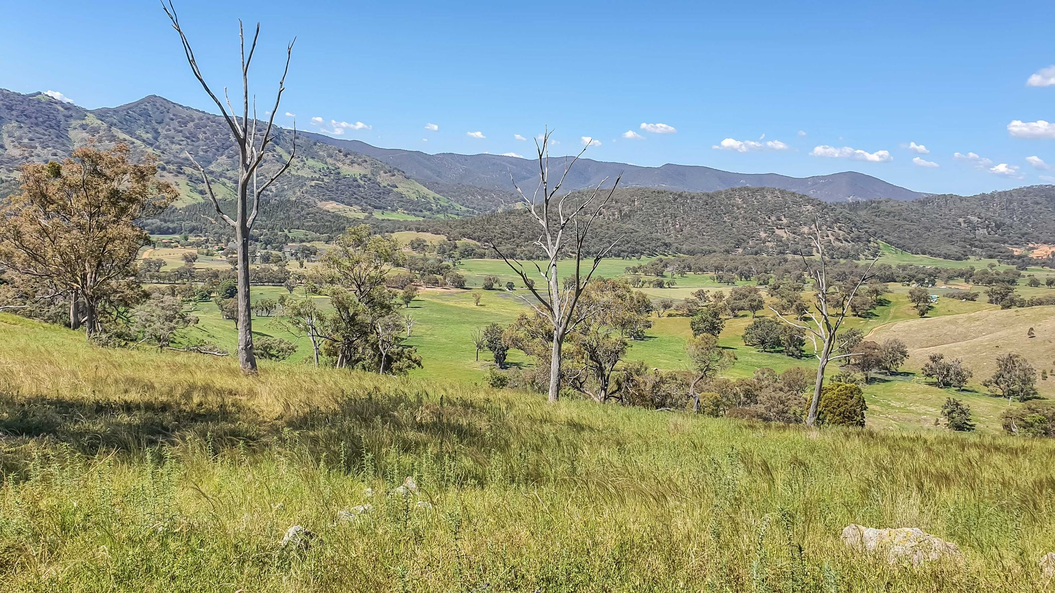 1532 Castlereagh Highway, Mudgee, NSW 2850