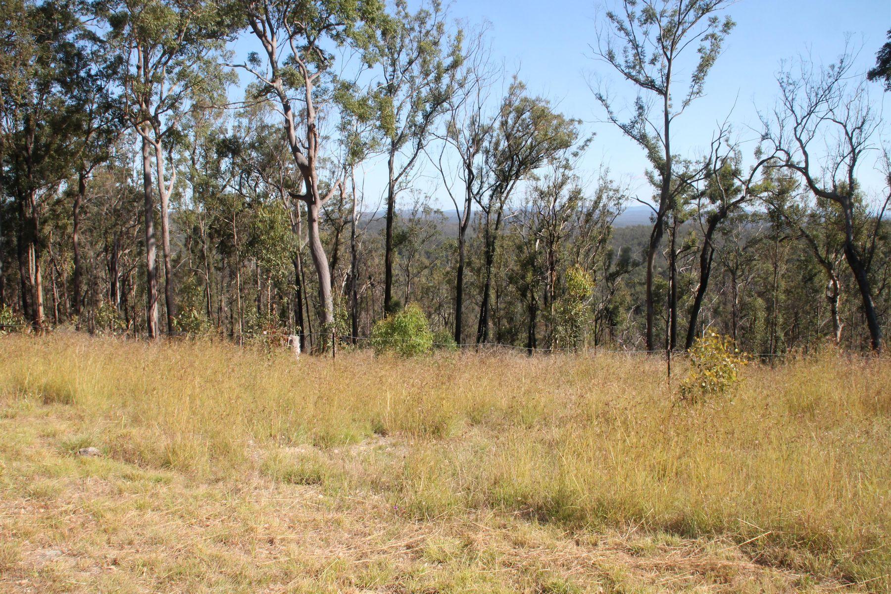 431 Long Gully Road, Drake, NSW 2469