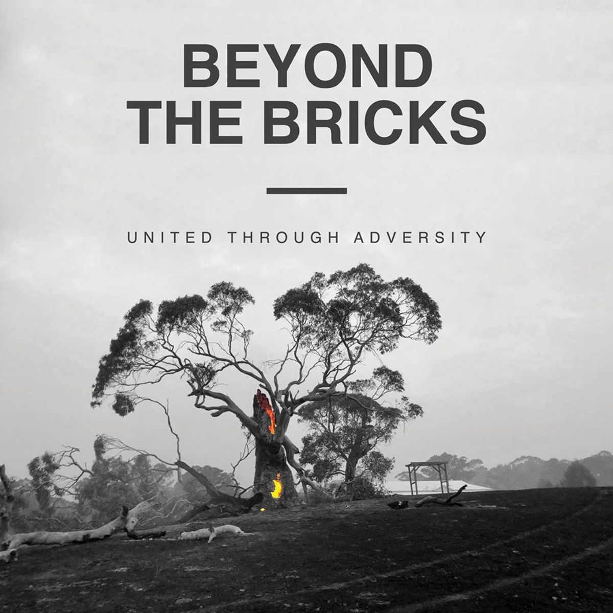 Beyond the Bricks