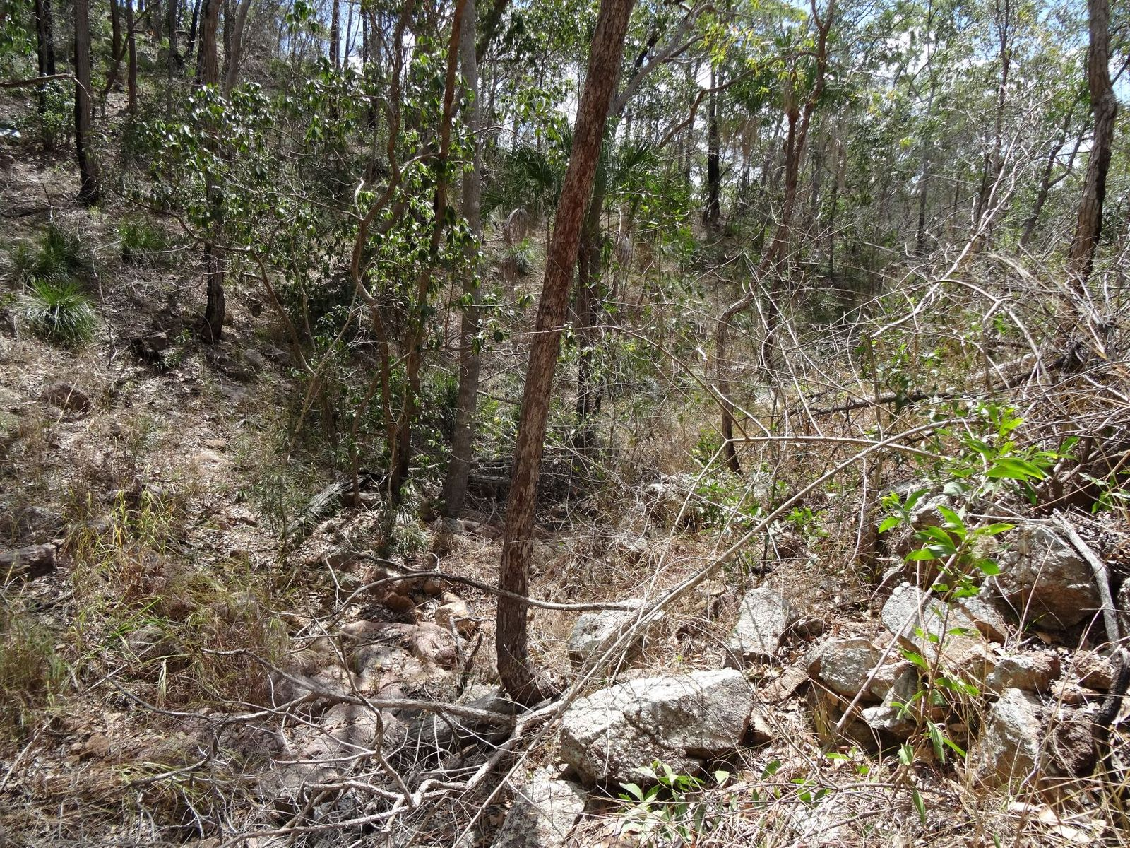 Lot 4 Clarkes Road, Lowmead, QLD 4676