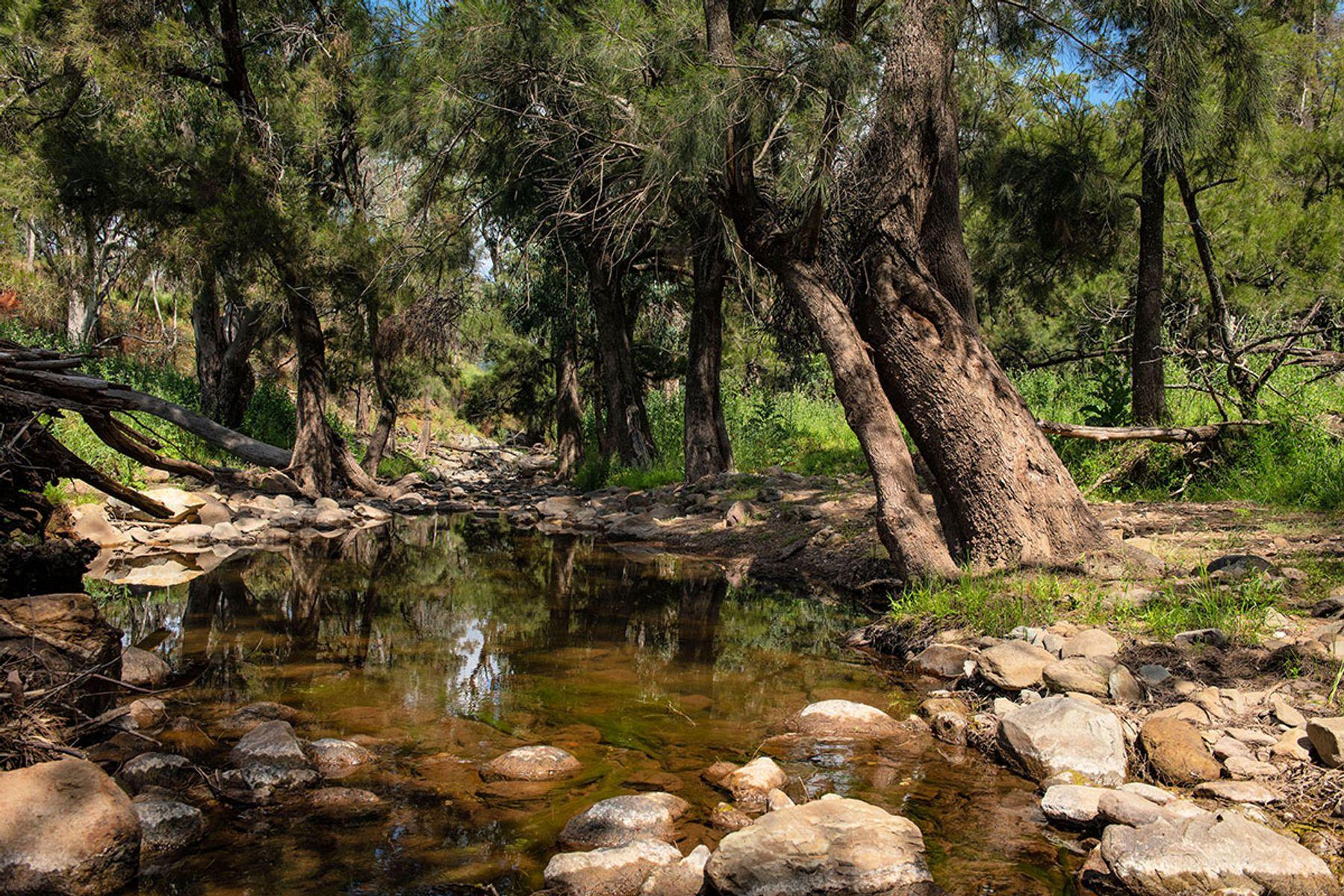 Lot 10, Part 1193 Yarrabin Road, Mudgee, NSW 2850