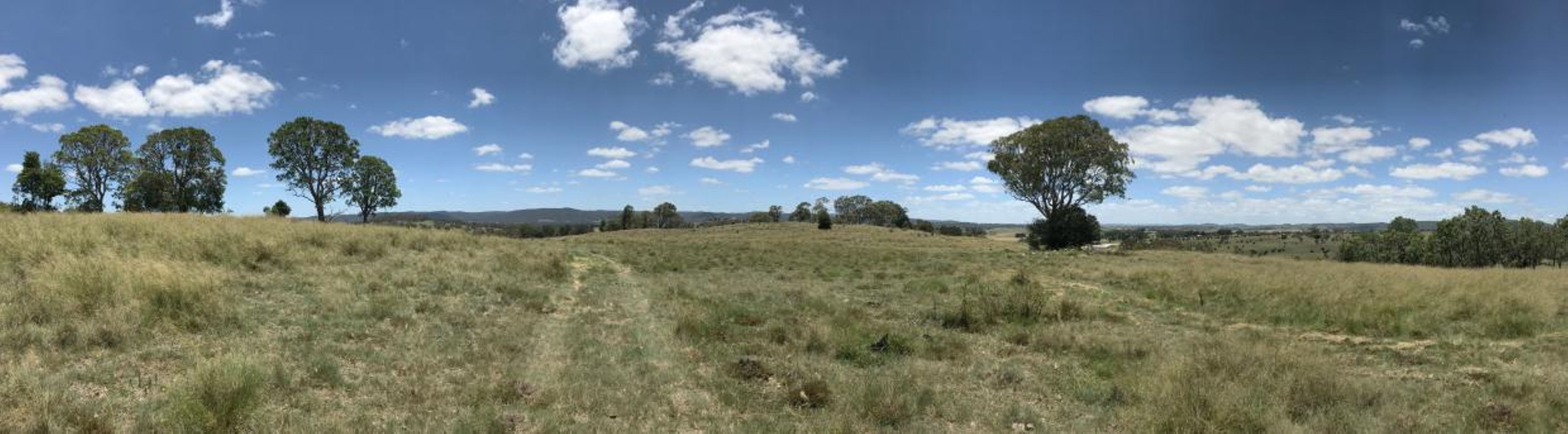 Lots 1 & 2 New England Highway, Tenterfield, NSW 2372