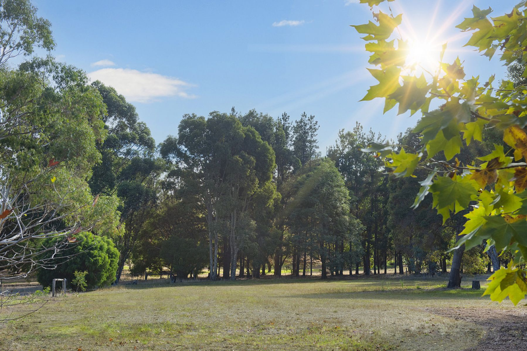 Proposed Lot 223 Brumby Place, Margaret River, WA 6285