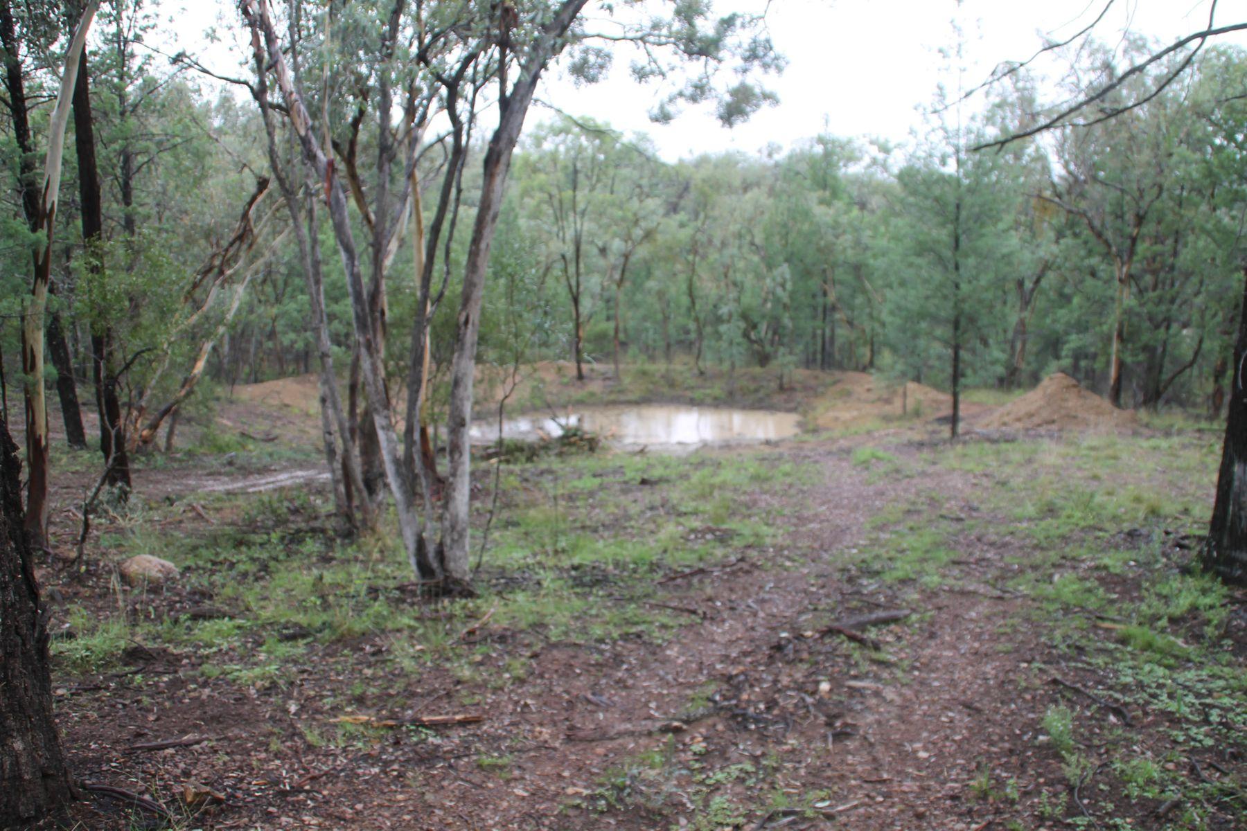340 Mole Station Road, Tenterfield, NSW 2372