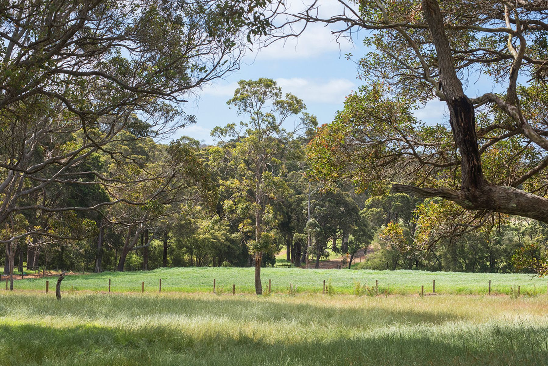 Lot 10/13 Rowe Road West, Witchcliffe, WA 6286